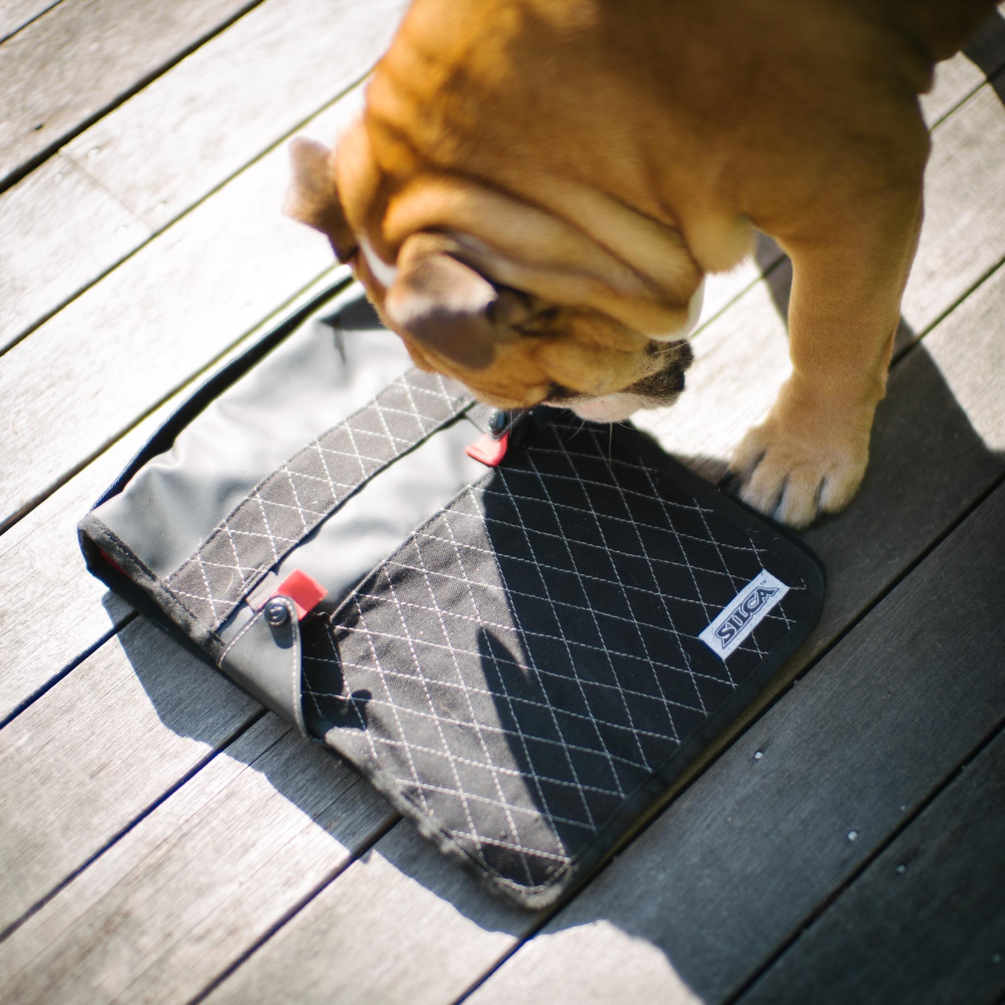 Winnie the Bulldog approves of the Silca T-Handle Folio