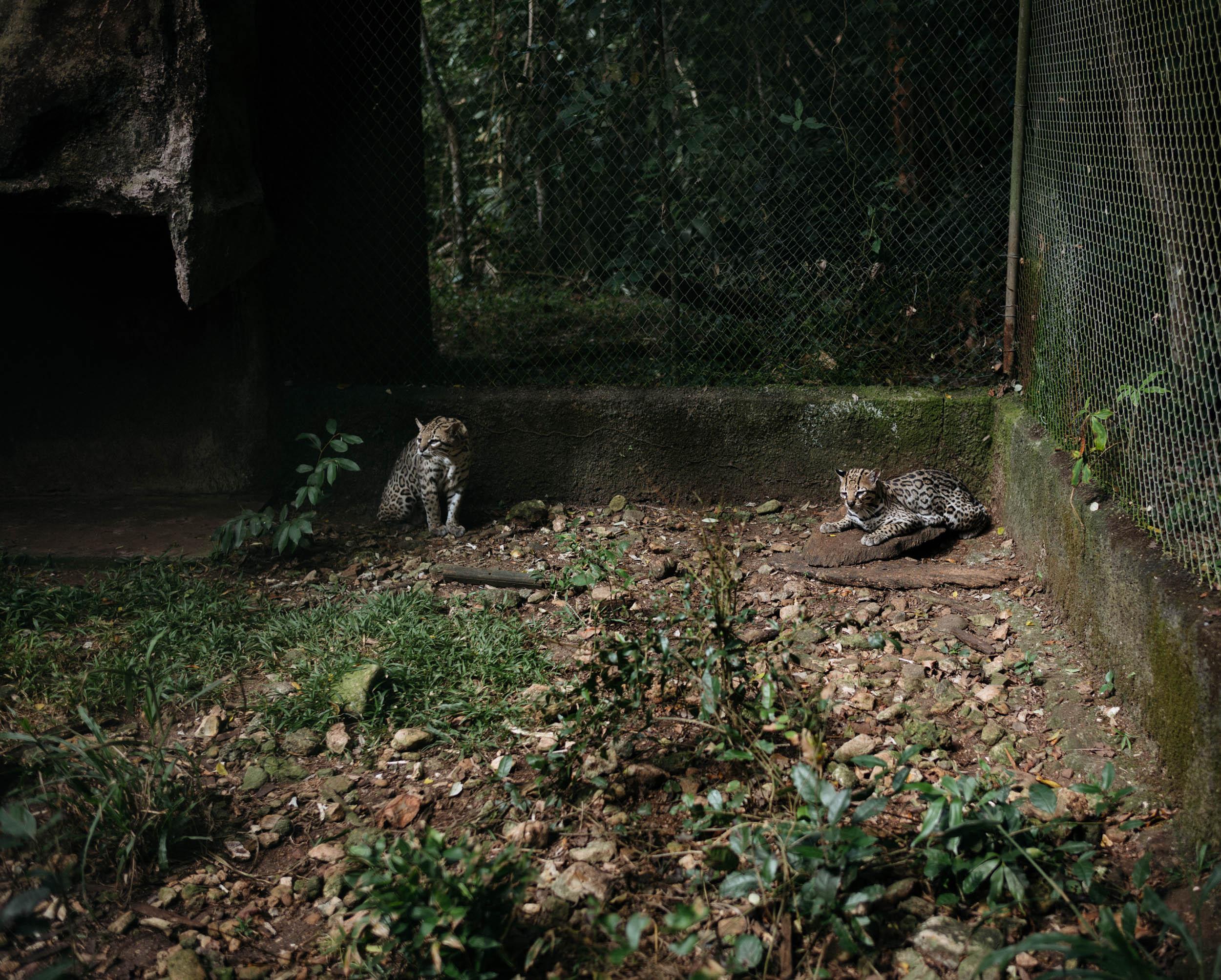 photo-rhetoric-guatemala-1008.jpg