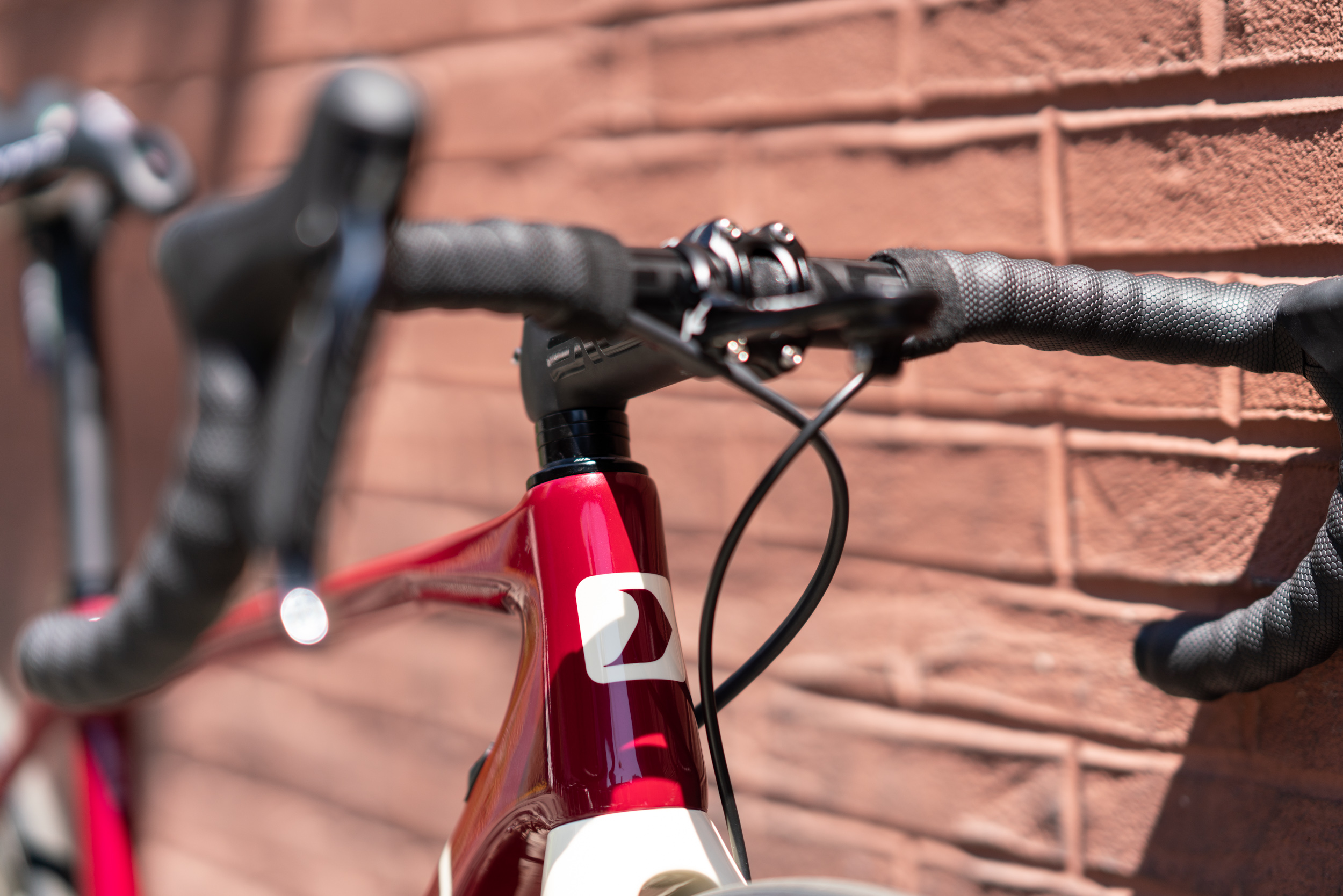 photo-rhetoric-to-be-determined-garneau-d1-blood-bike-1014.jpg