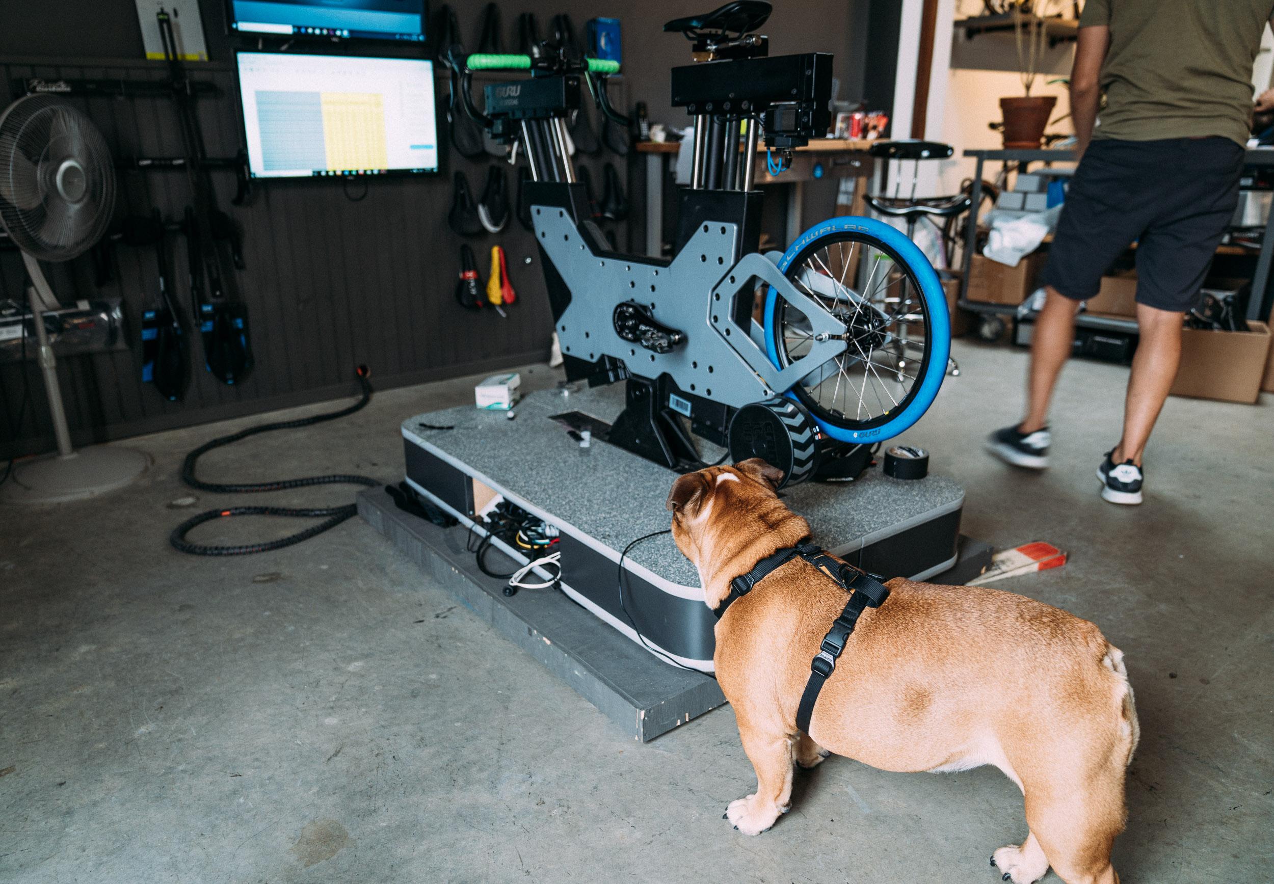 photo-rhetoric-to-be-determined-acme-bike-fits-1013.jpg