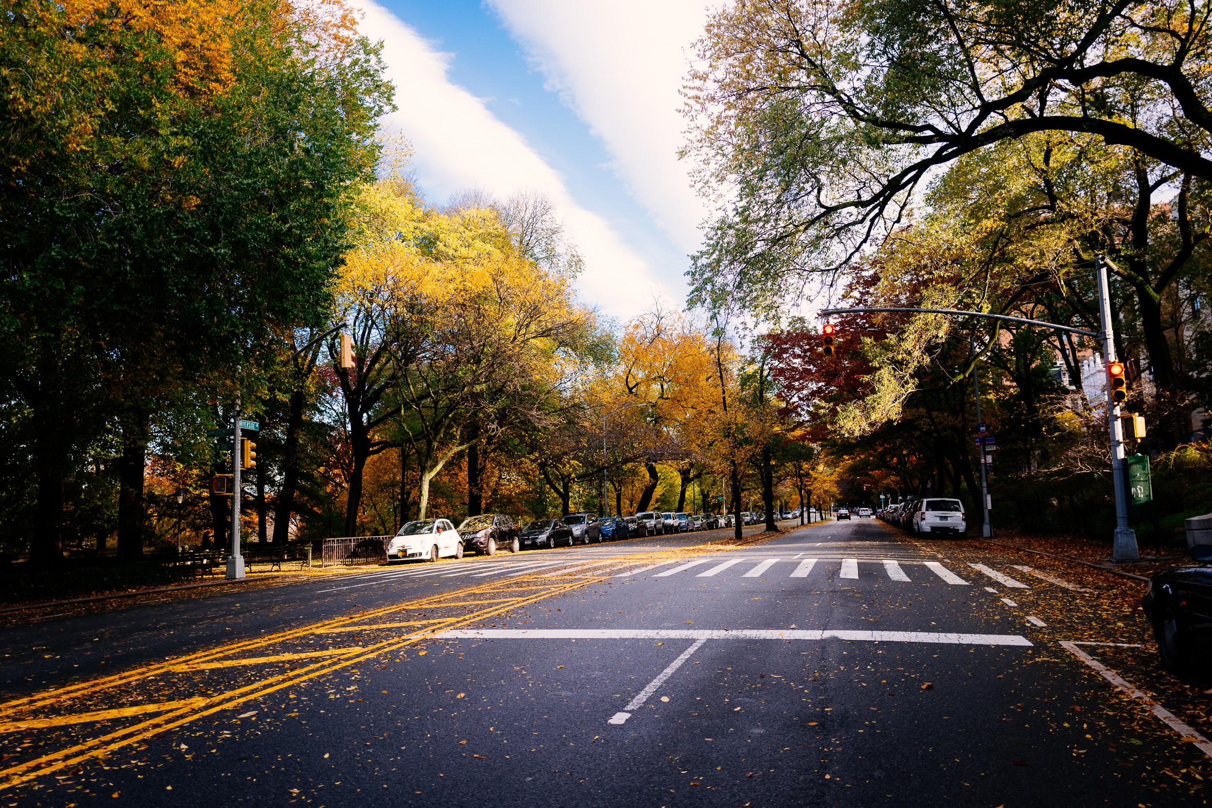 photo-rhetoric-to-be-determined-river-road-fall-foliage-5000.jpg