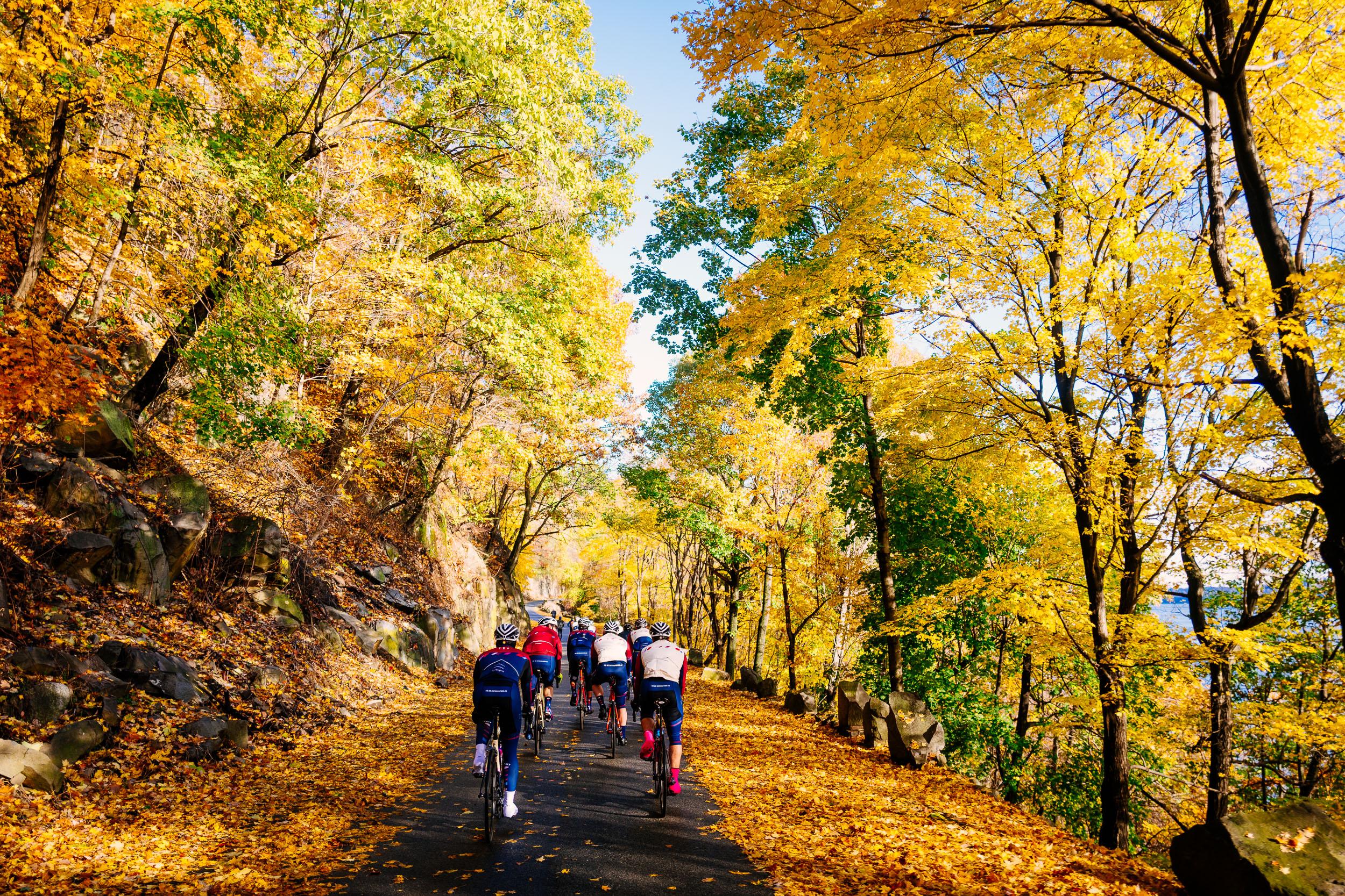 photo-rhetoric-to-be-determined-river-road-fall-foliage-5017.jpg