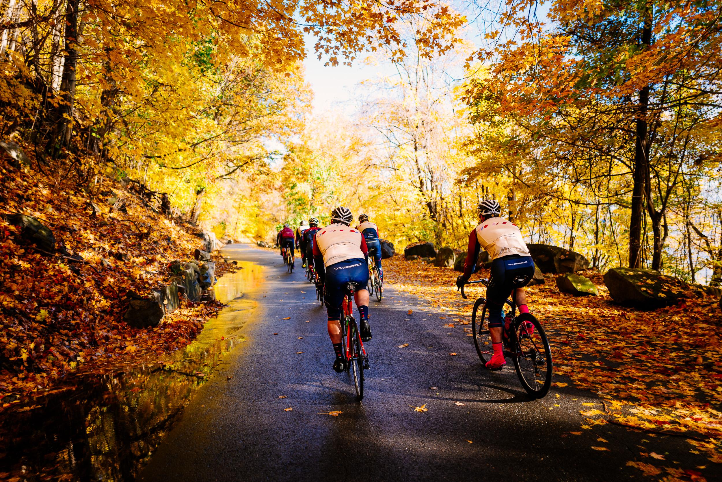 photo-rhetoric-to-be-determined-river-road-fall-foliage-5019.jpg