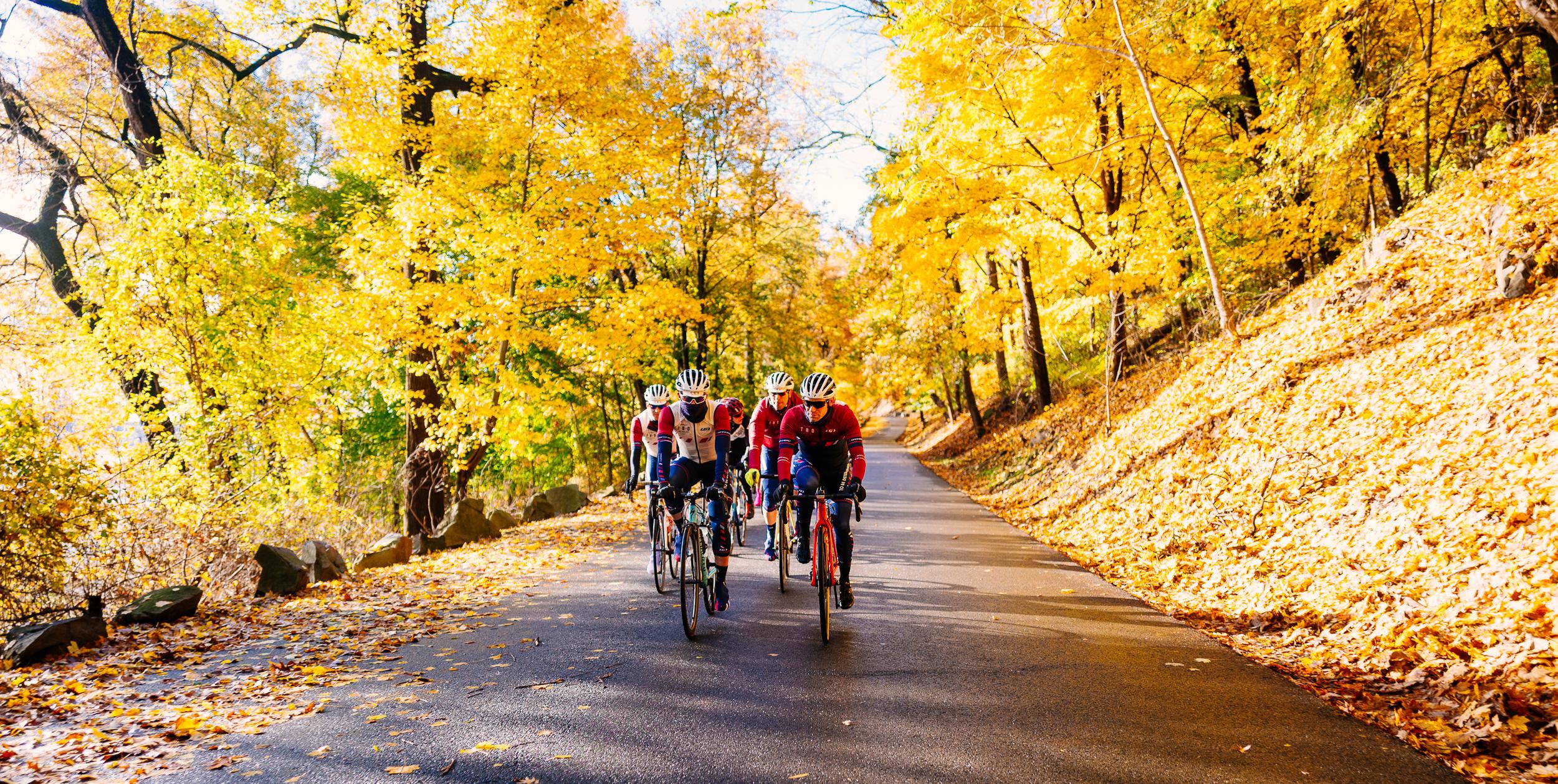 photo-rhetoric-to-be-determined-river-road-fall-foliage-5020.jpg