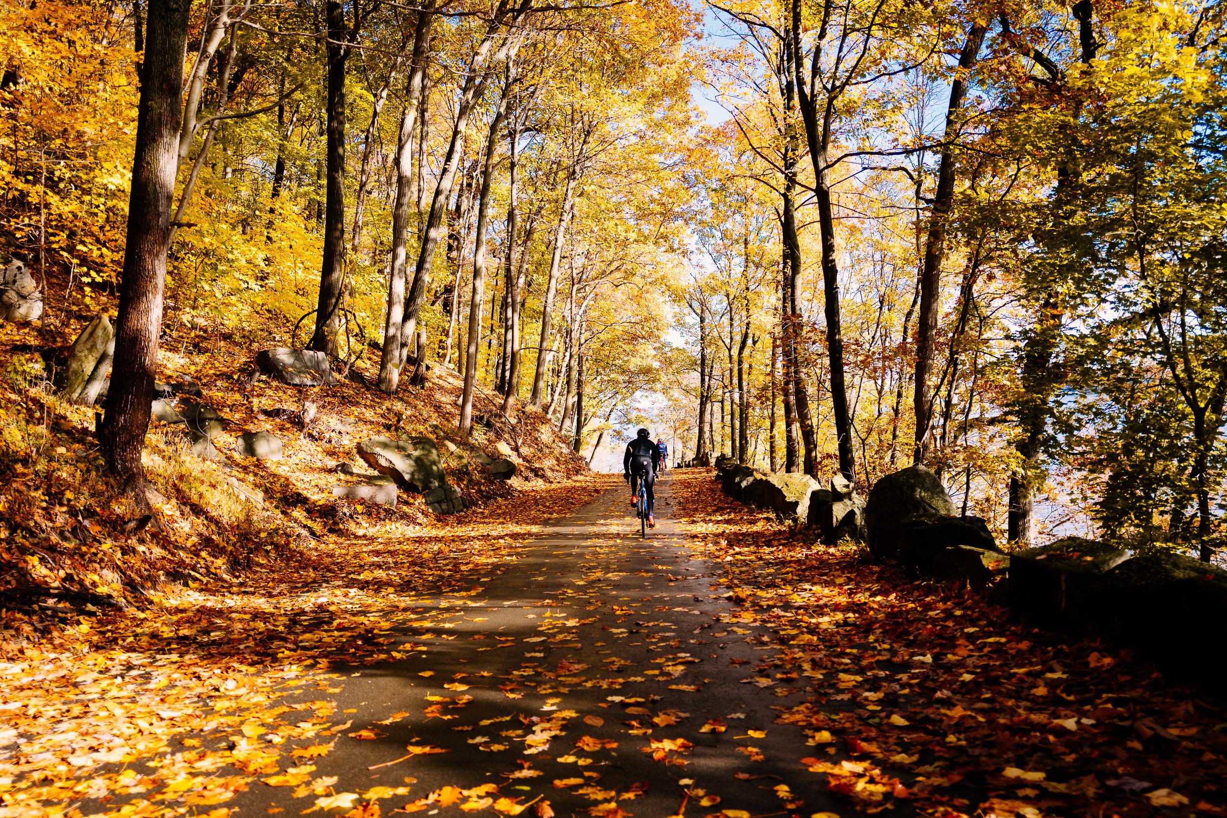 photo-rhetoric-to-be-determined-river-road-fall-foliage-5027.jpg