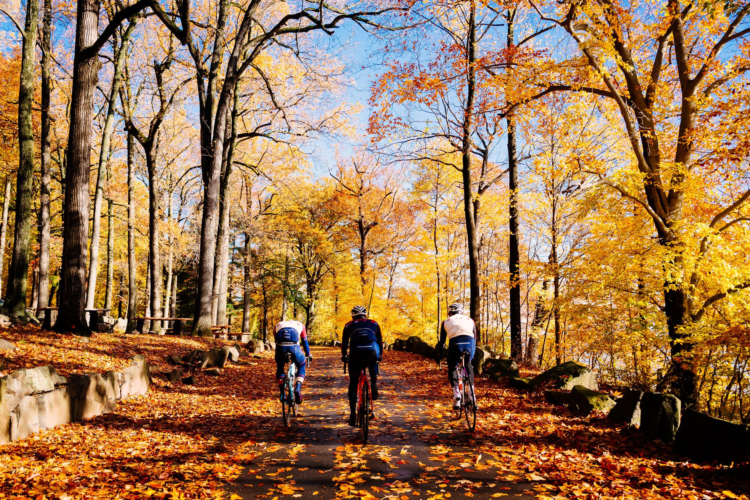 photo-rhetoric-to-be-determined-river-road-fall-foliage-5028.jpg