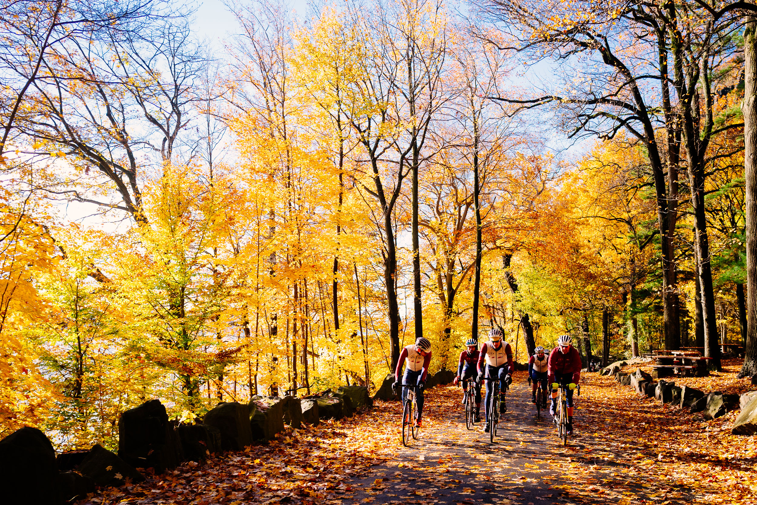 photo-rhetoric-to-be-determined-river-road-fall-foliage-5029.jpg