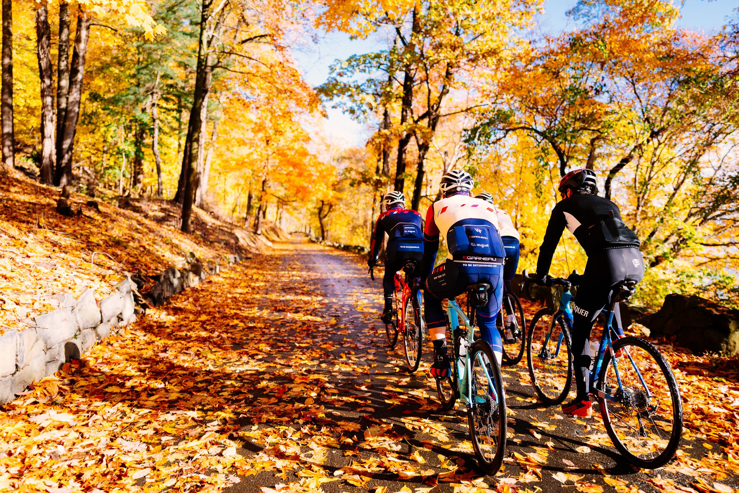 photo-rhetoric-to-be-determined-river-road-fall-foliage-5030.jpg