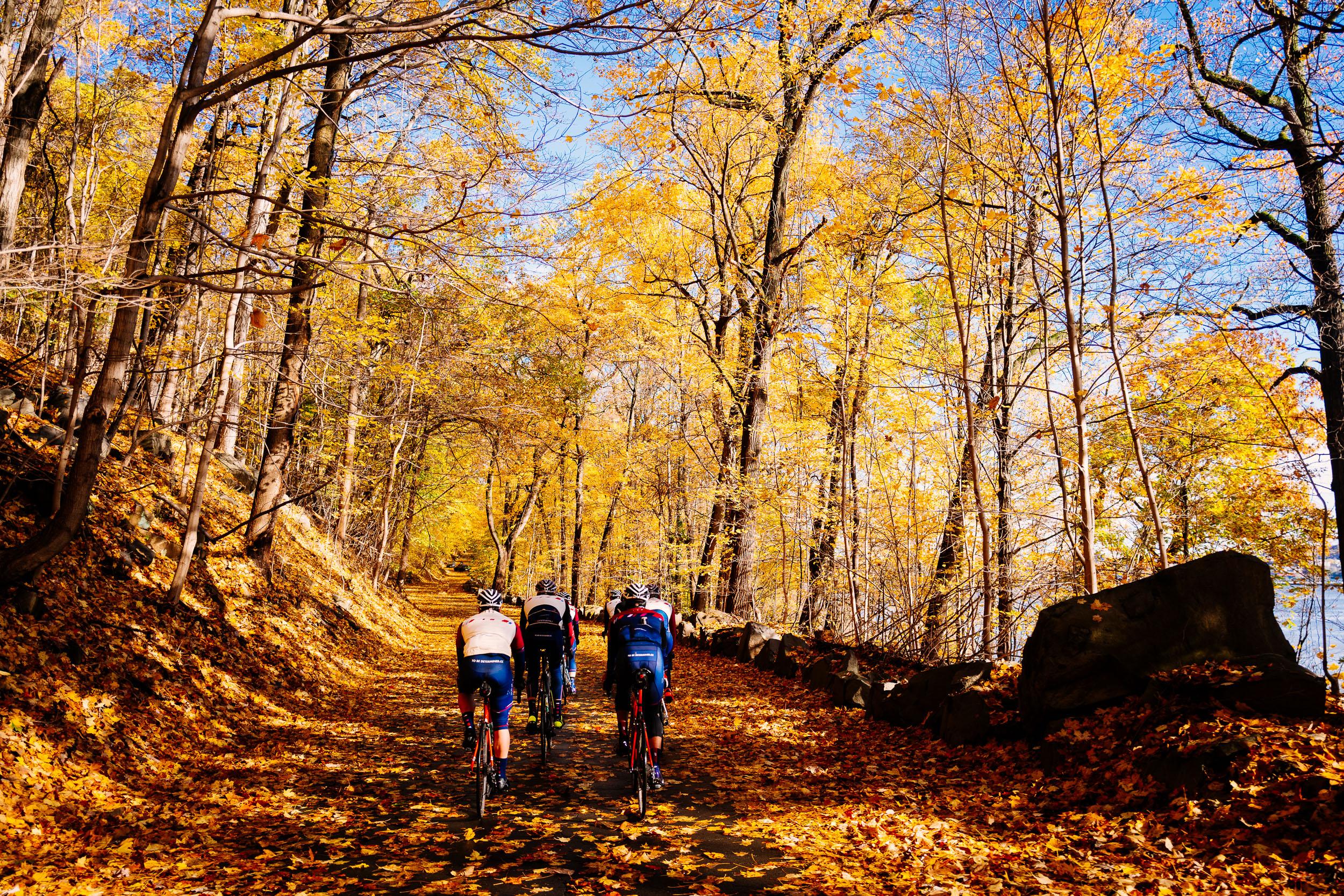 photo-rhetoric-to-be-determined-river-road-fall-foliage-5036.jpg
