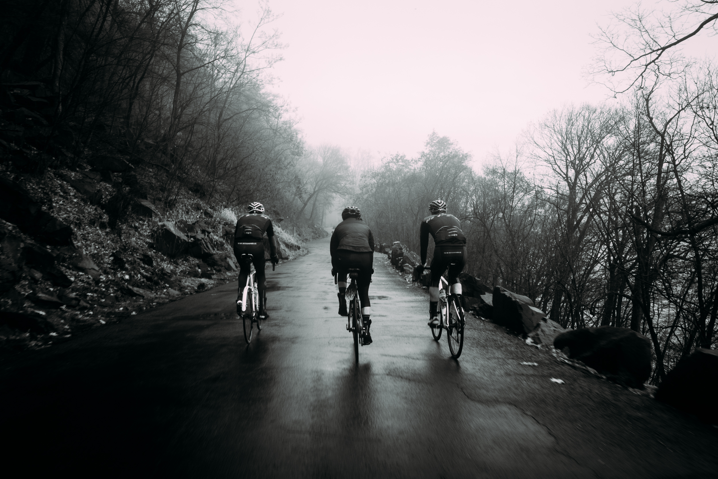 to-be-determined-fog-ride-team-ride-1025.jpg