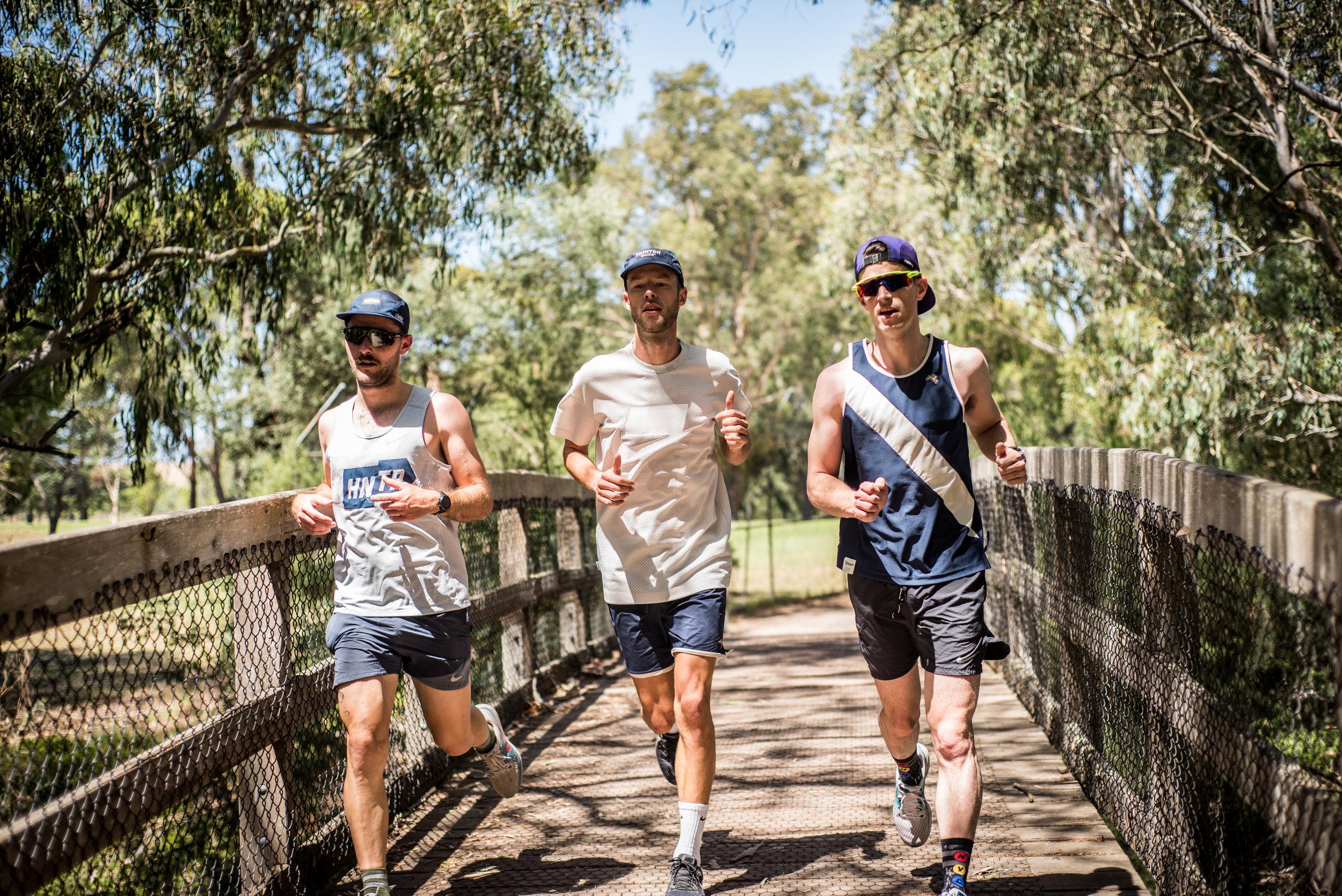 Gum trees - Very Australian