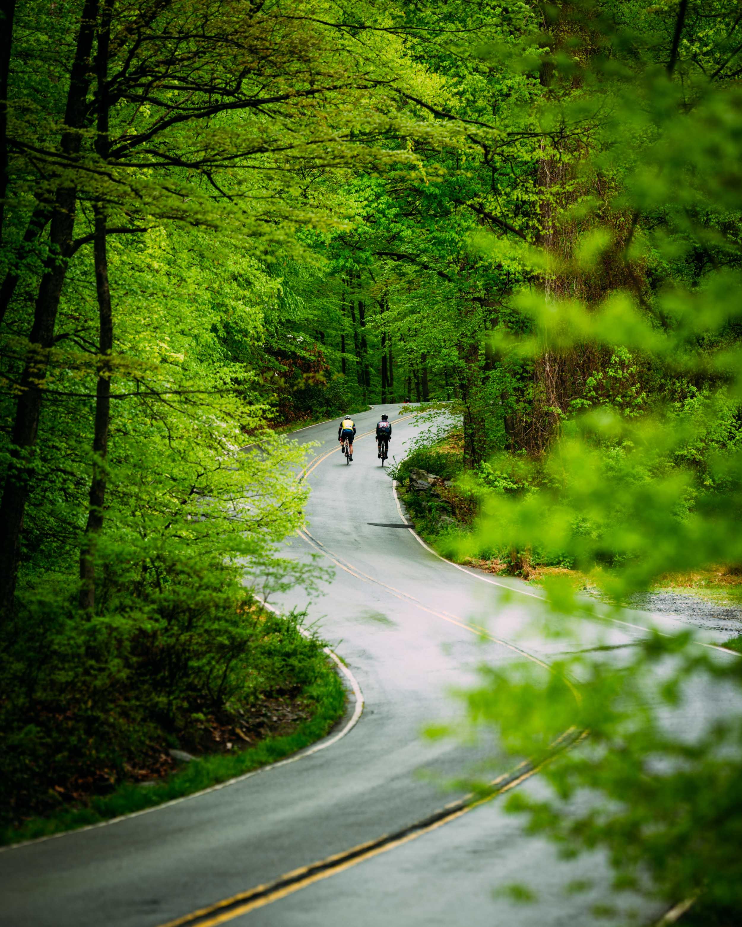 Photo-Rhetoric-To-Be-Determined-Bear-Mountain-Classic-635.jpg