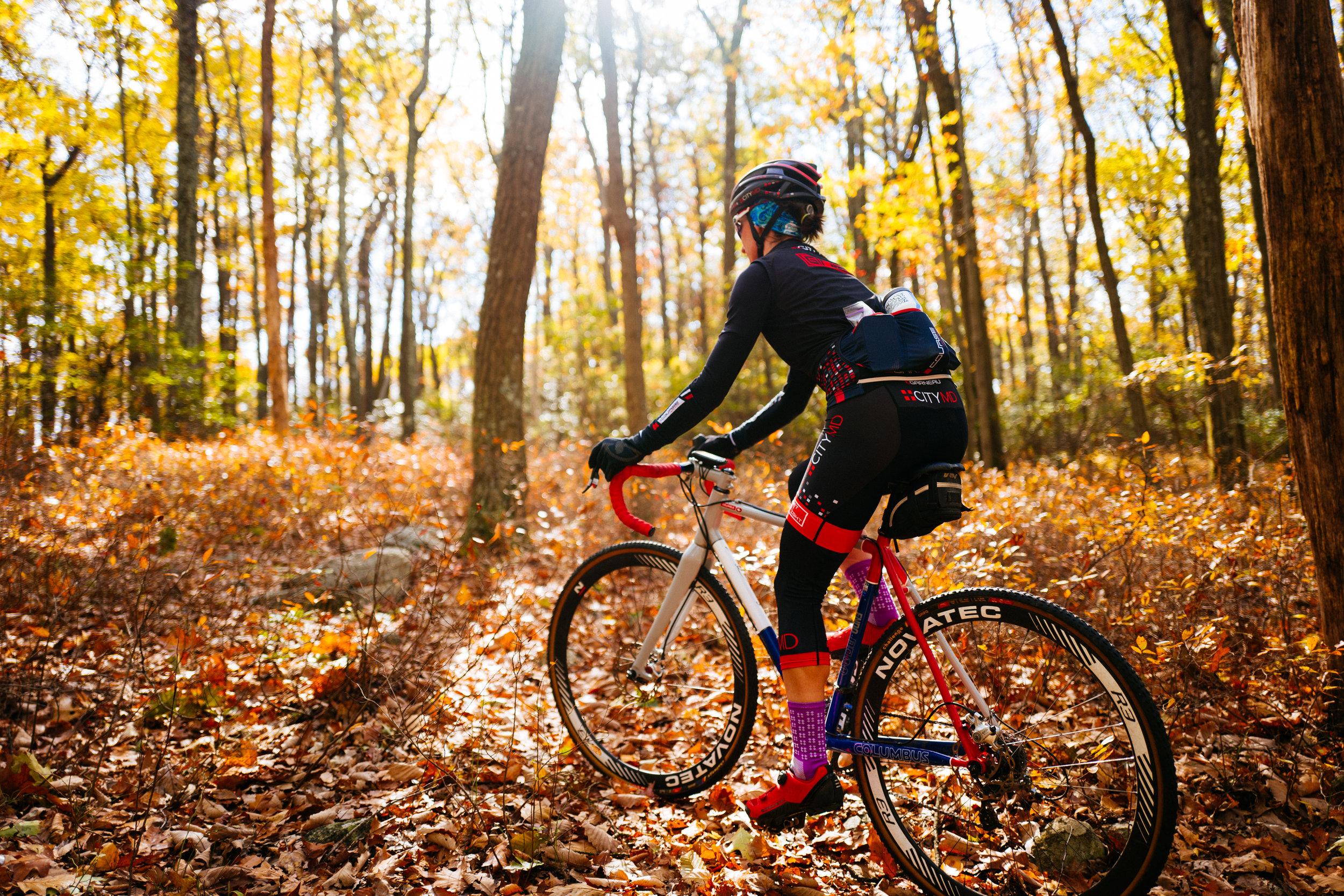 Photo Rhetoric - Fall Foliage-1005.jpg
