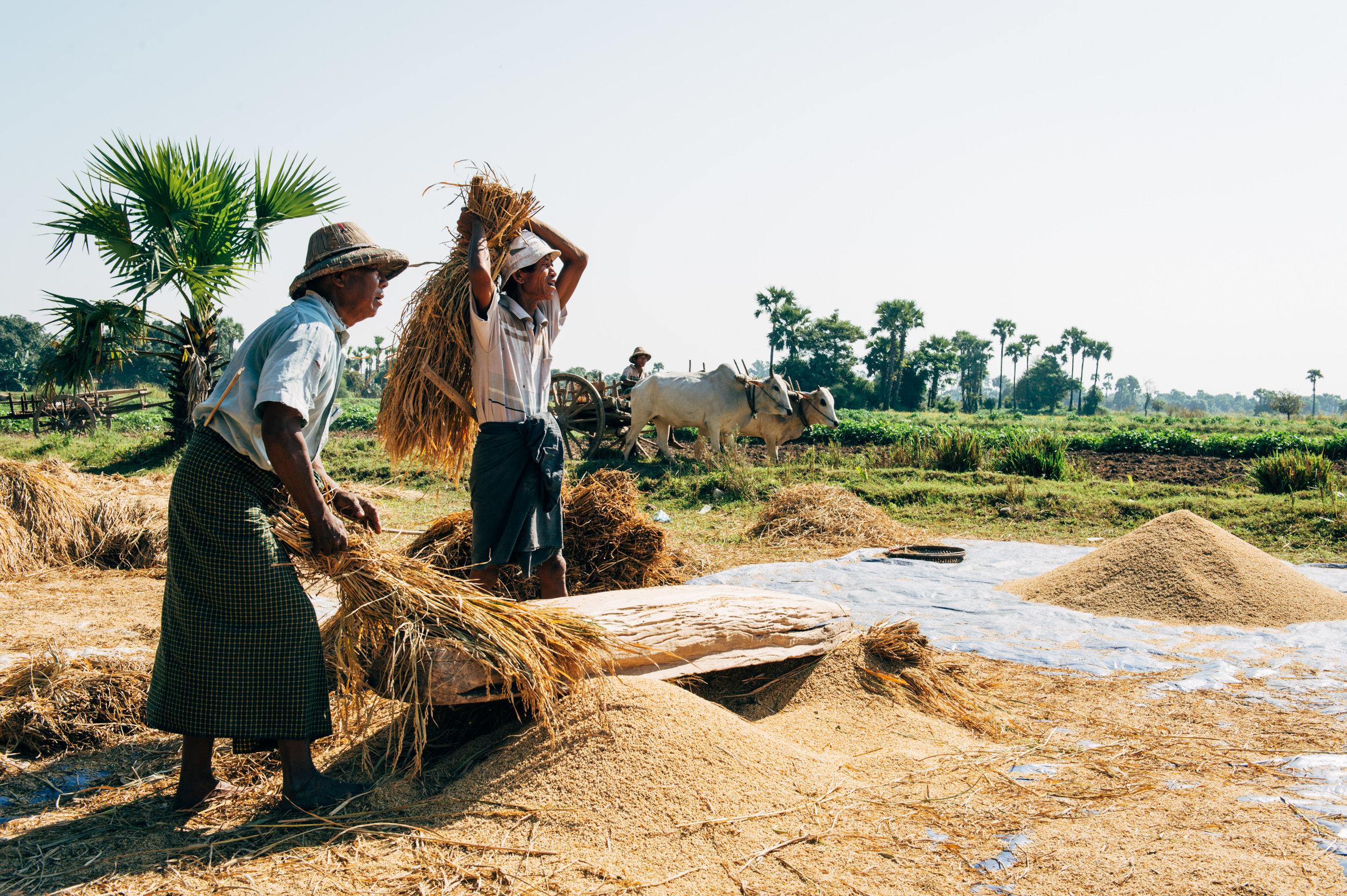 Photo Rhetoric - To Be Determined - Burma-5032.jpg