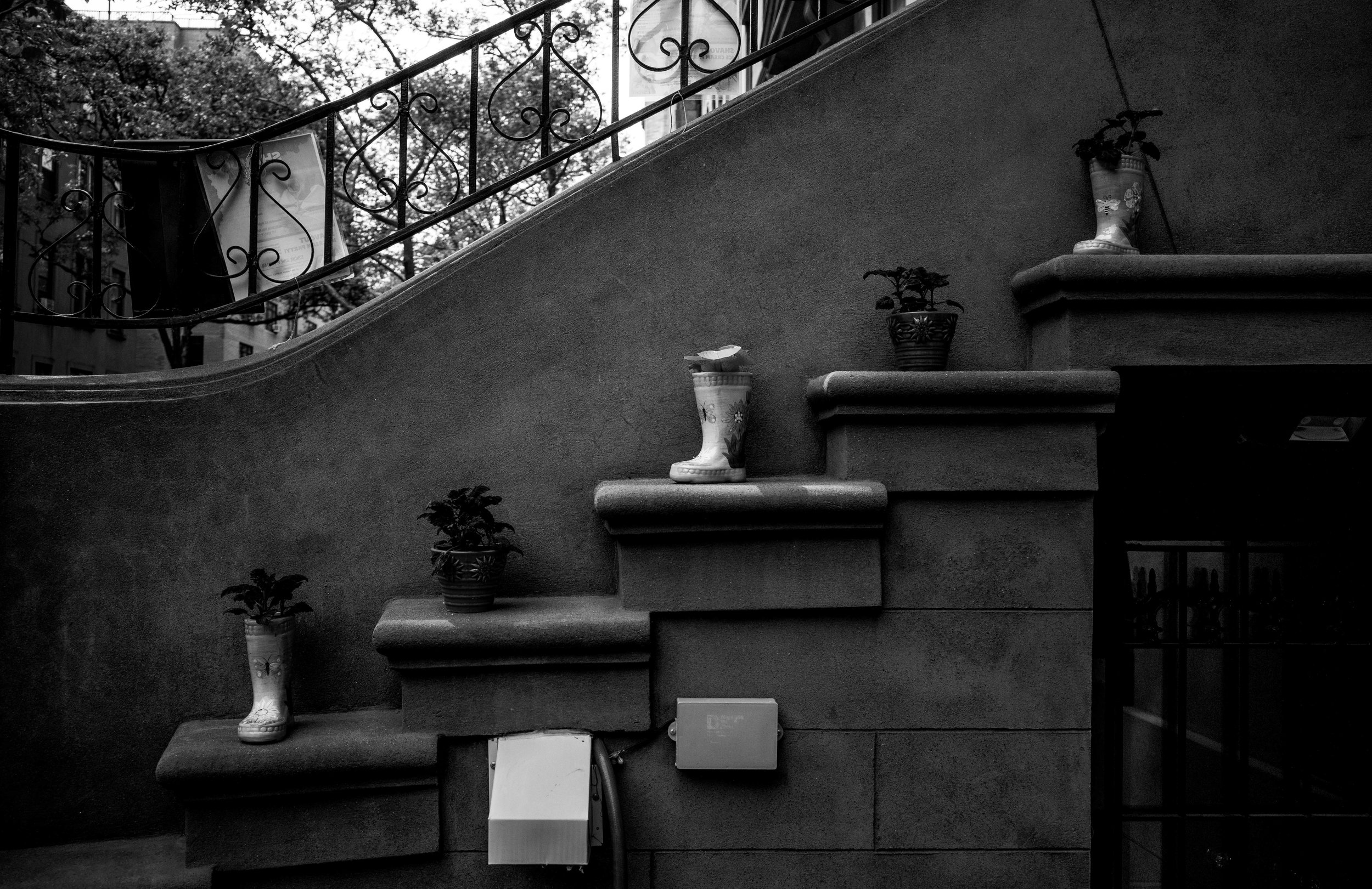 Flower pots in front of a brownstone.