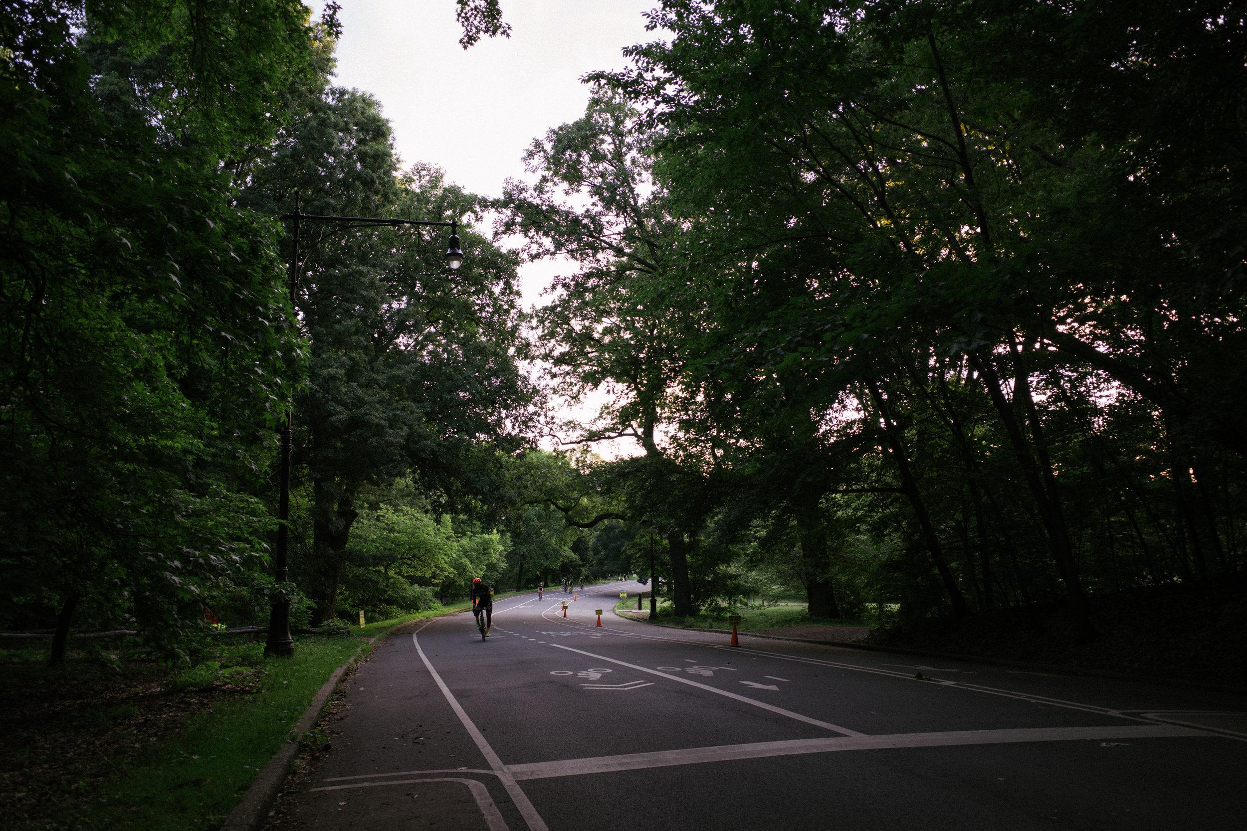 Photo Rhetoric - To Be Determined - Prospect Park Century-5012.jpg