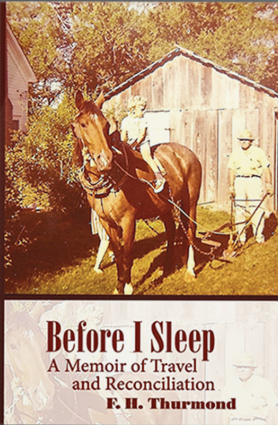Before I Sleep Cover.PNG