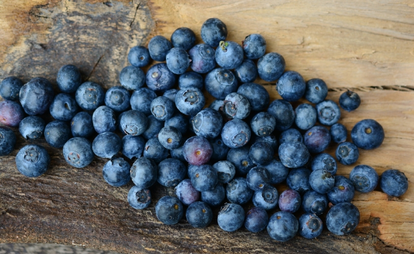 Blueberries for your health!