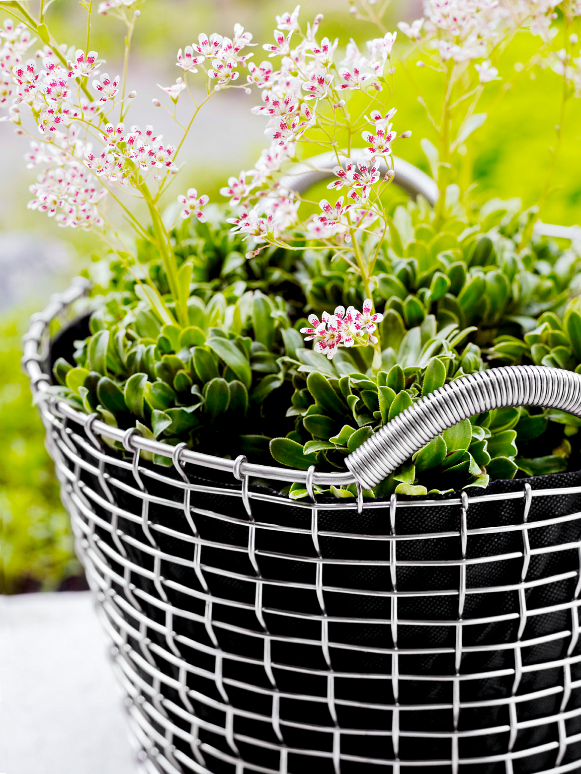 Planting basket, Classic 35 with planting bag