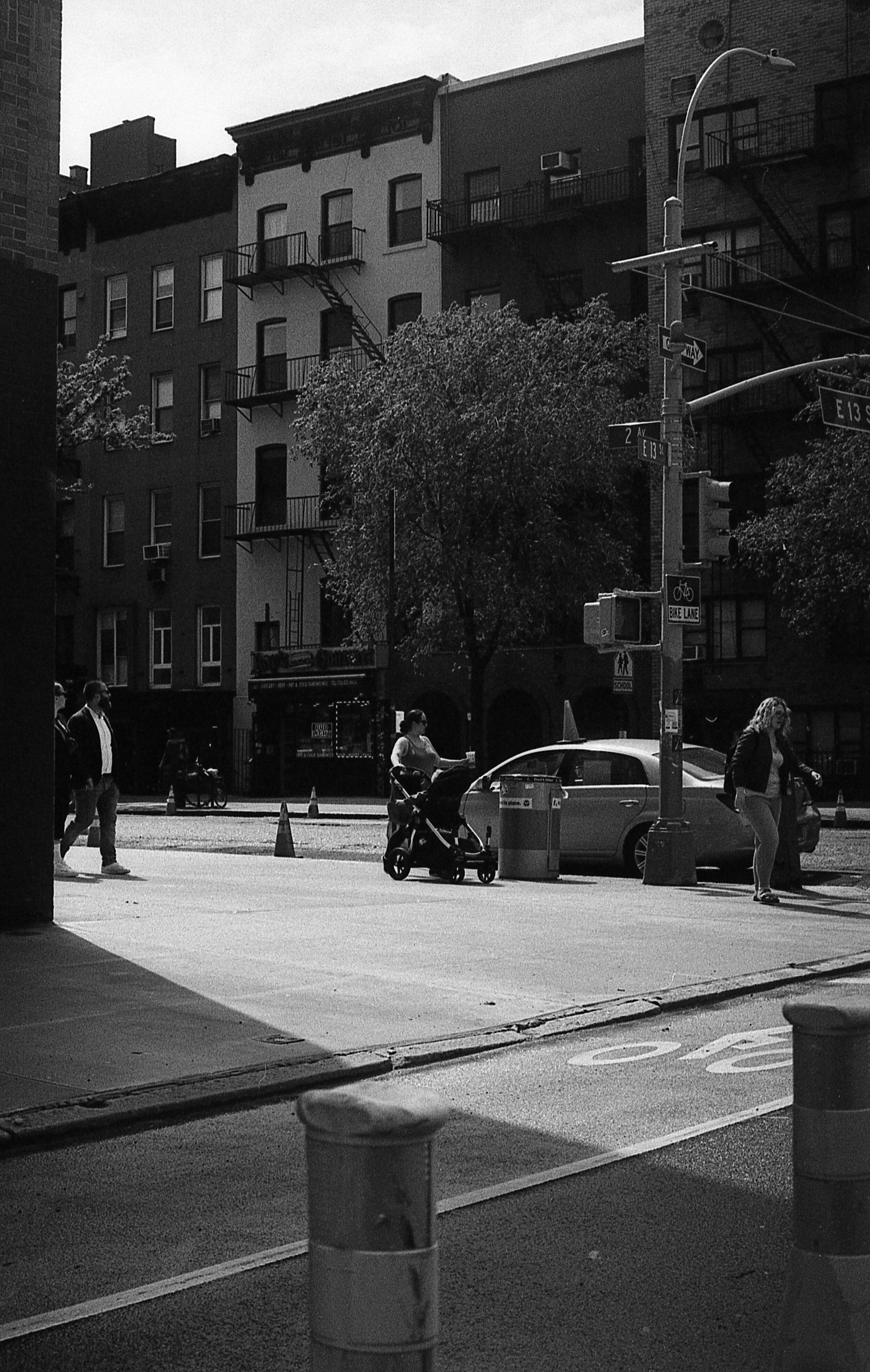NYTX1816253.jpg