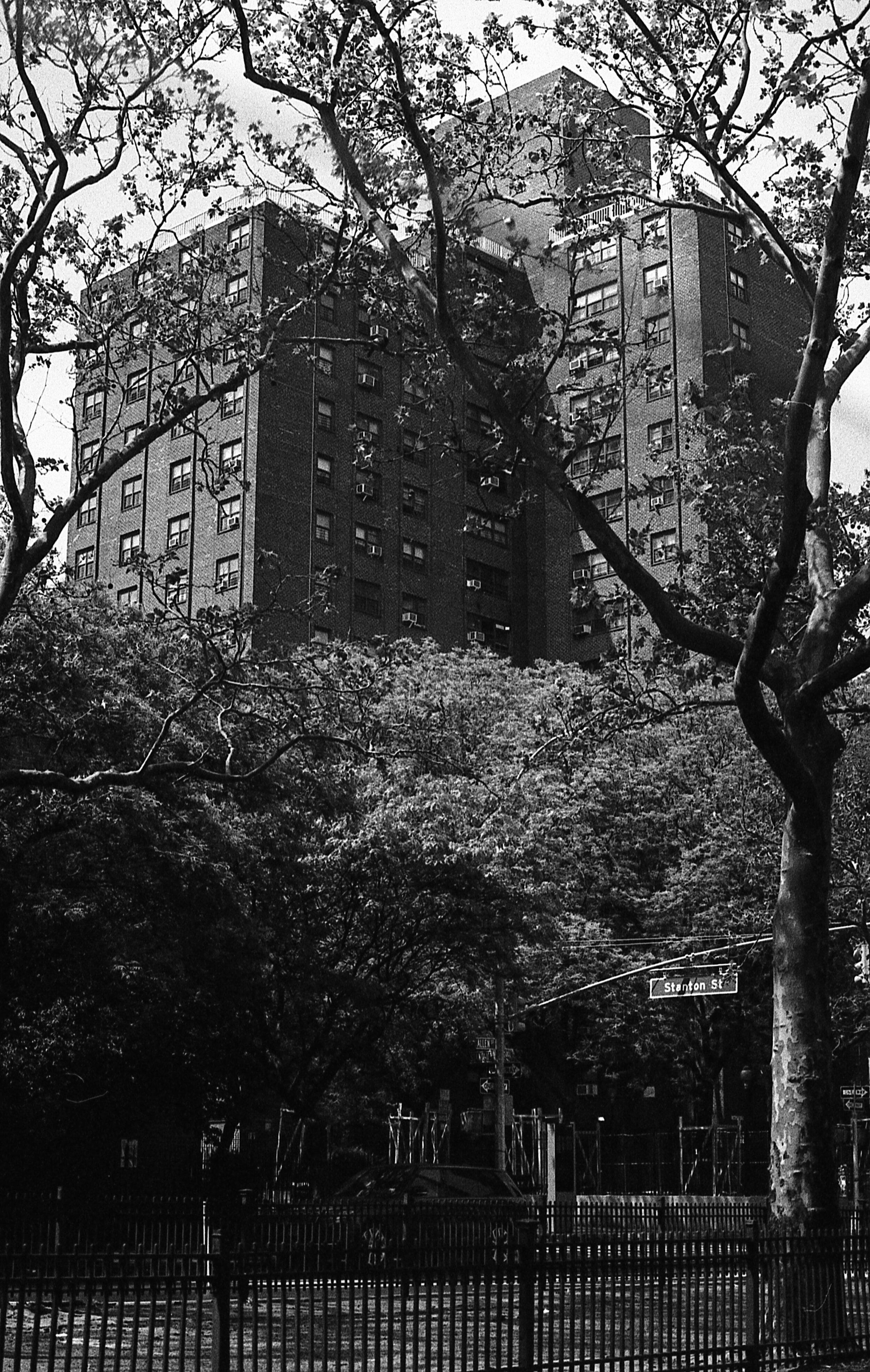 NYTX1816255.jpg