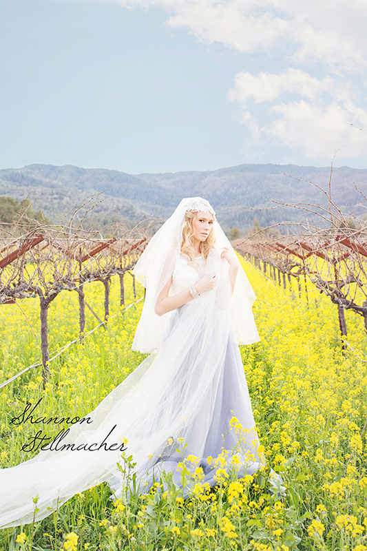 Mustard-Fields-Napa002-web.jpg