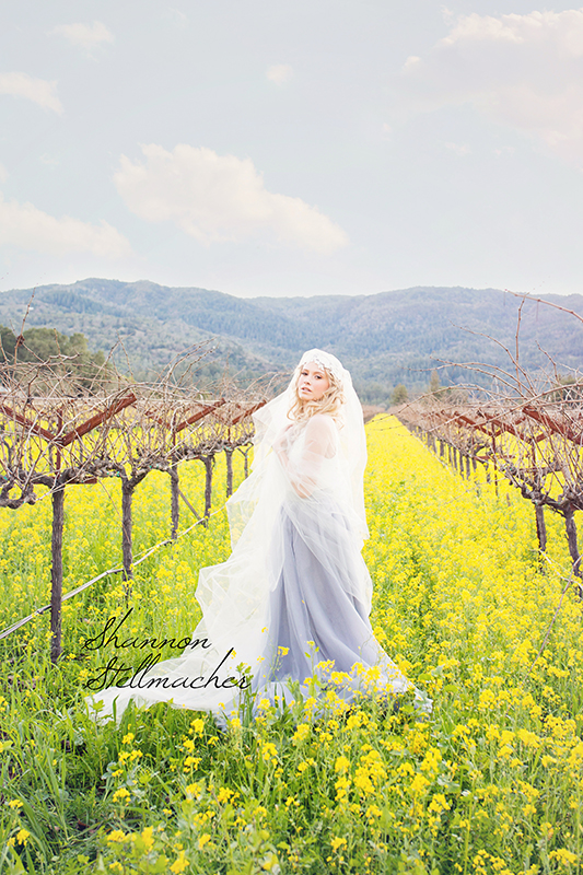 Mustard-Fields-Napa005-web.jpg