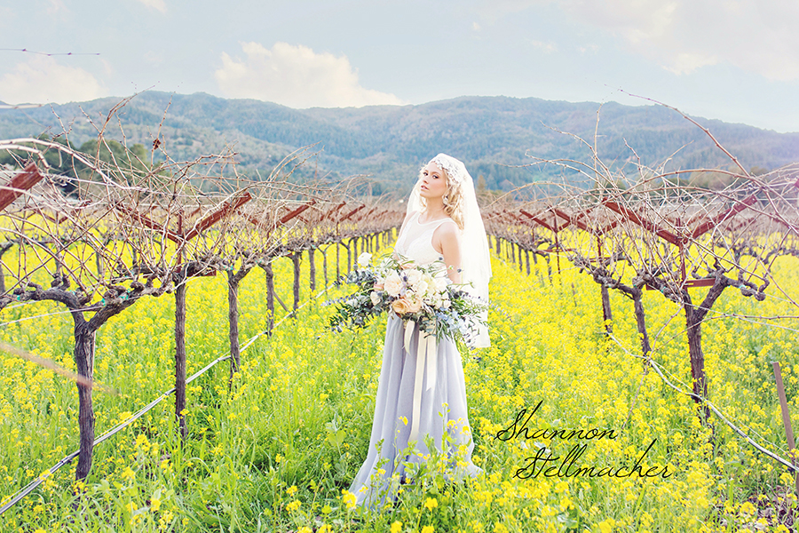 Mustard-Fields-Napa006-web.jpg