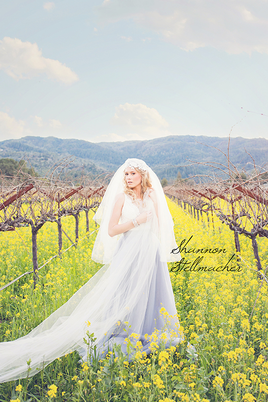 Mustard-Fields-Napa007-web.jpg