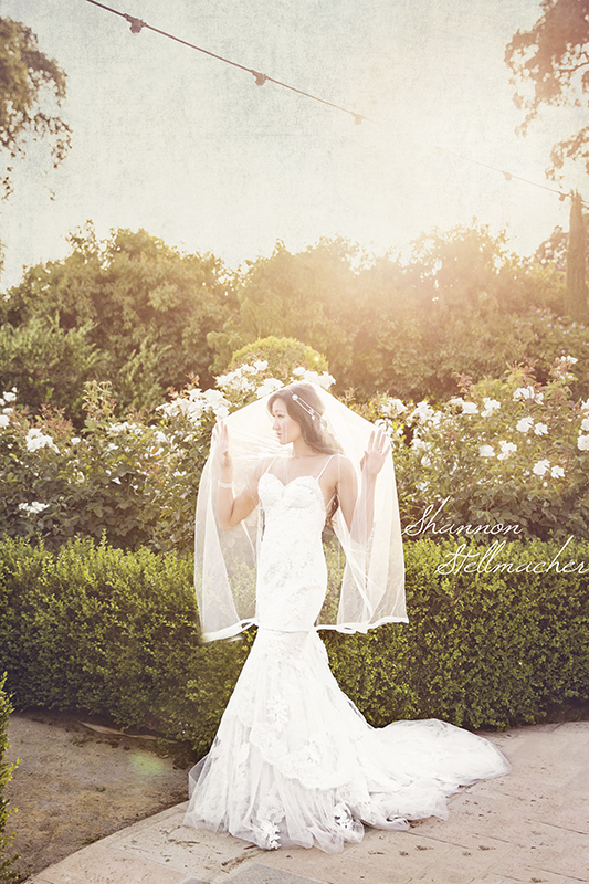 Sunset Bridal Portrait at V. Sattui Winery Napa Valley