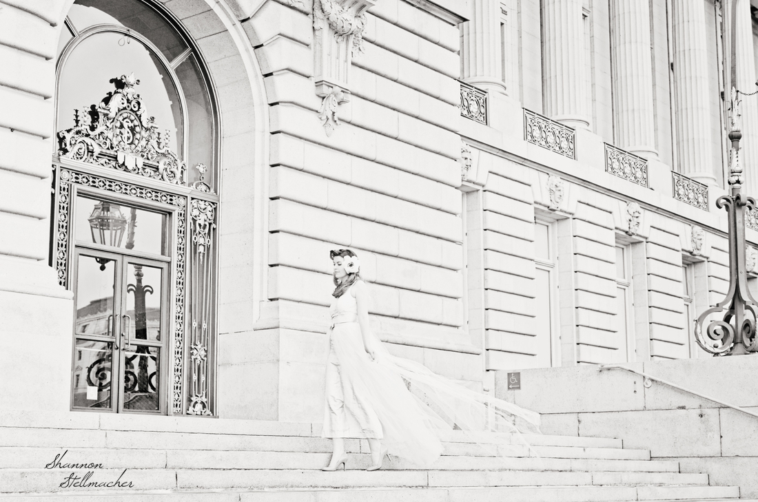 San Francisco City Hall Retro 3.jpg