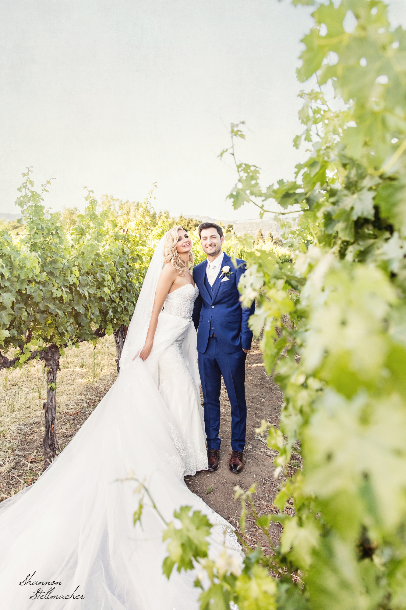 V.Sattui Wedding Napa.jpg