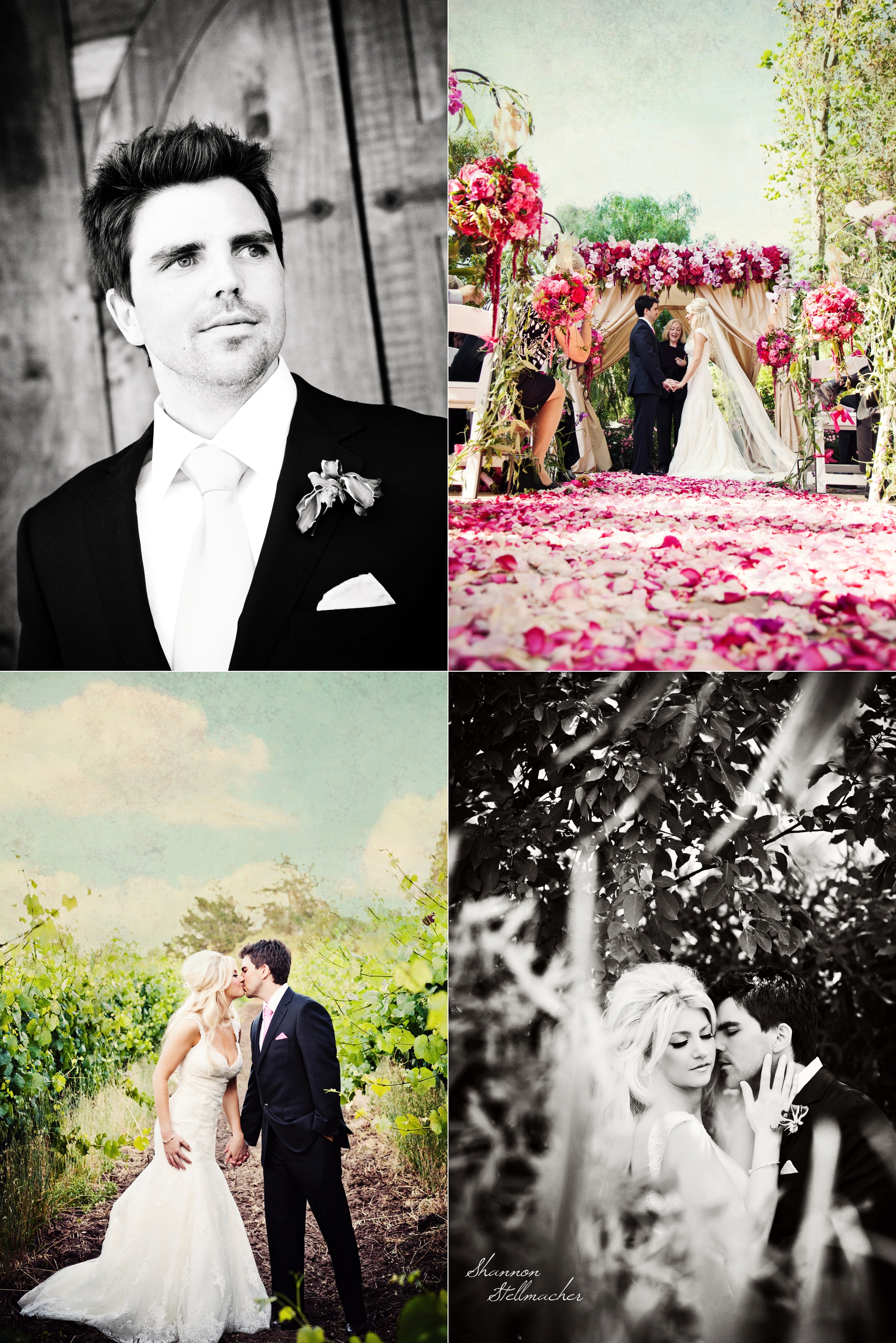 Cline Cellars Wedding Sonoma 3.jpg