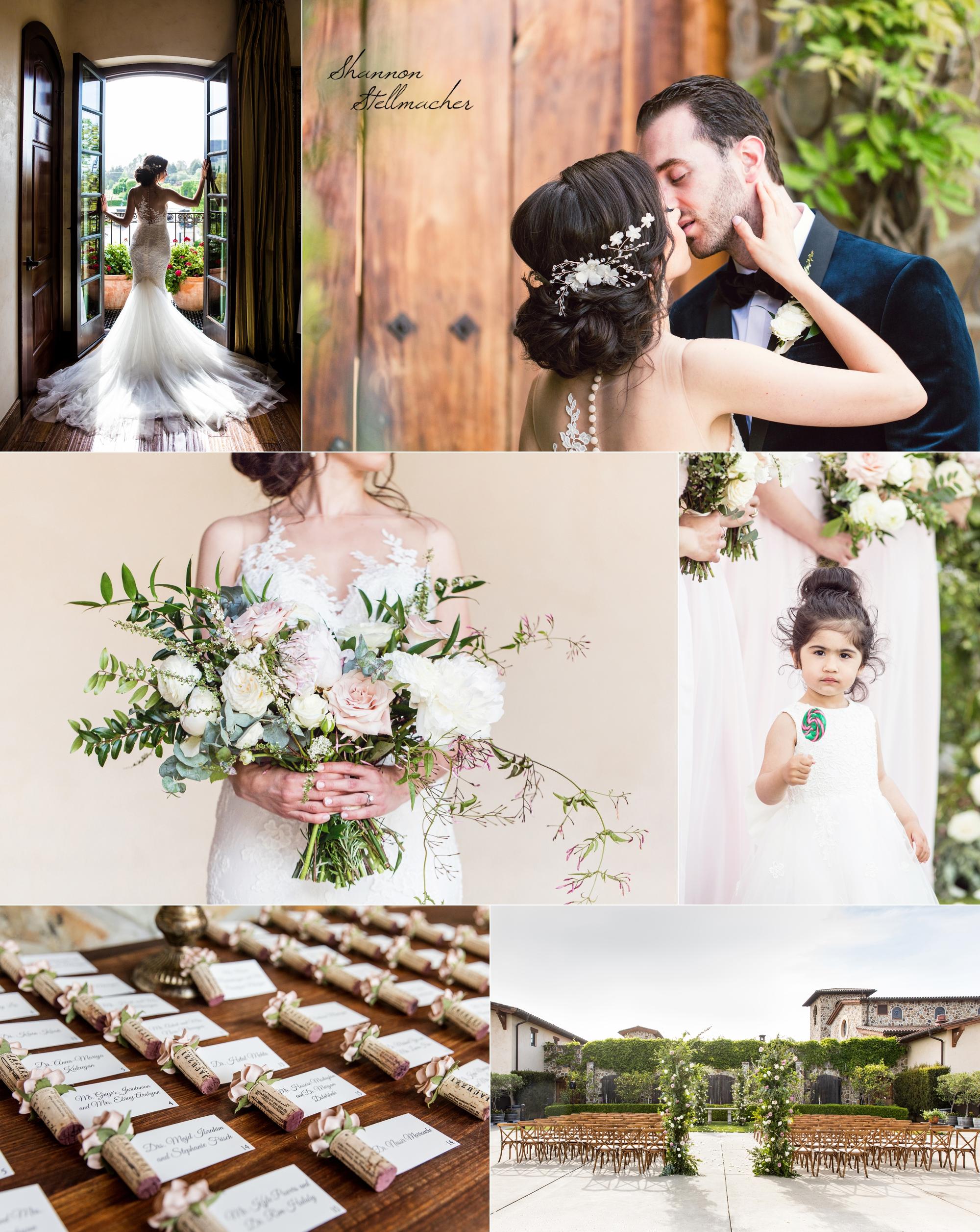 Jacuzzi Winery Sonoma Wedding 1.jpg