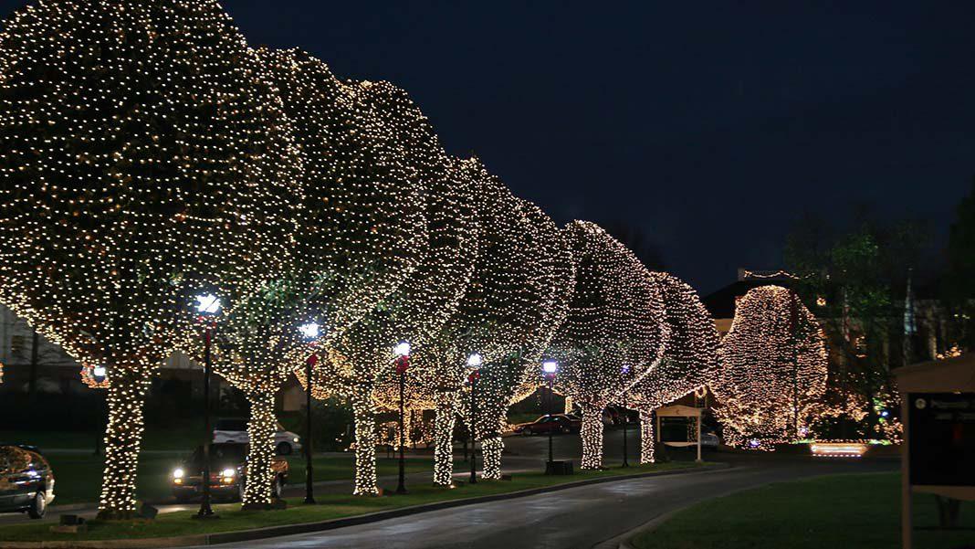 seasonal lighting 5.jpg