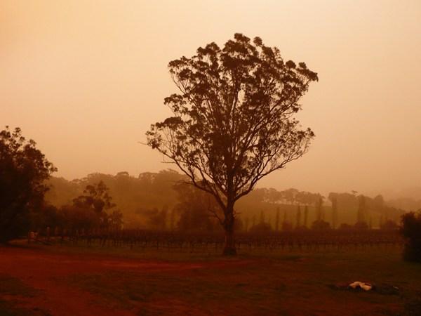 Dust storm in Winter