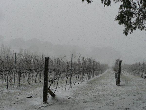 Late Winter snow stor