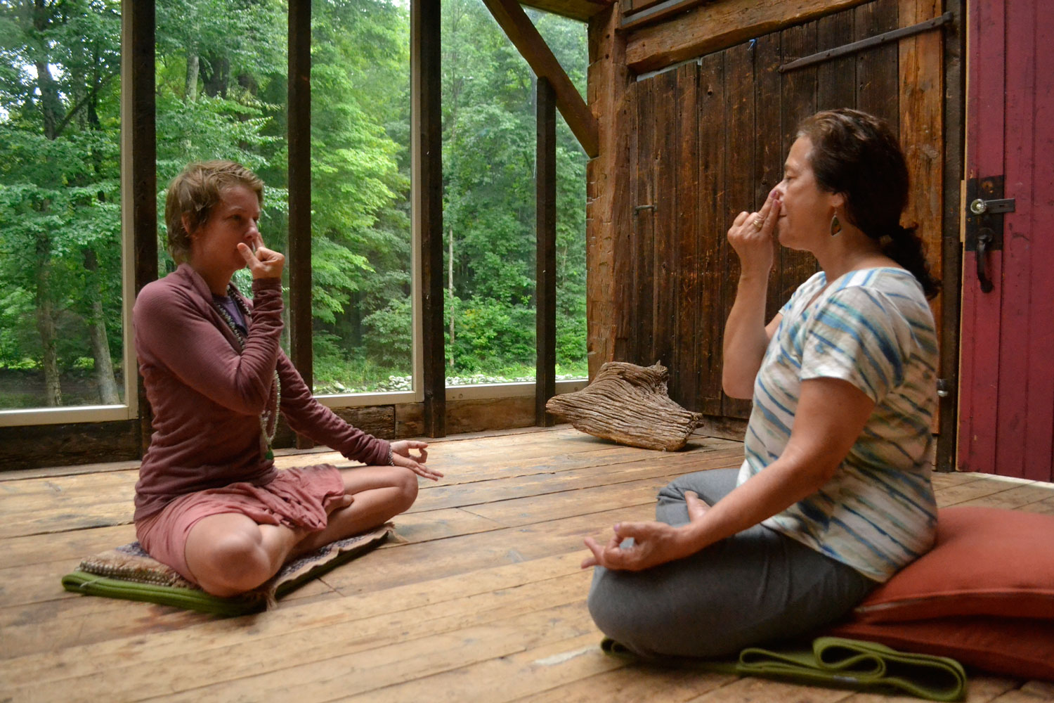 private yoga and pranayam session with Nicole Jaquis