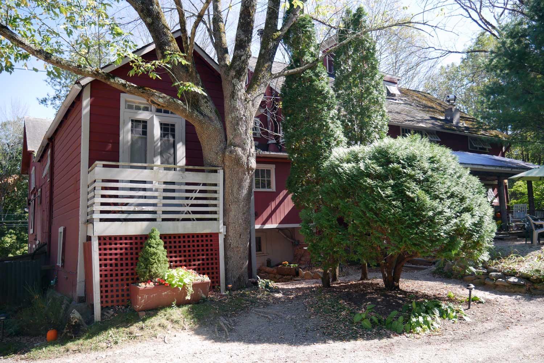 Room 15, Tree House