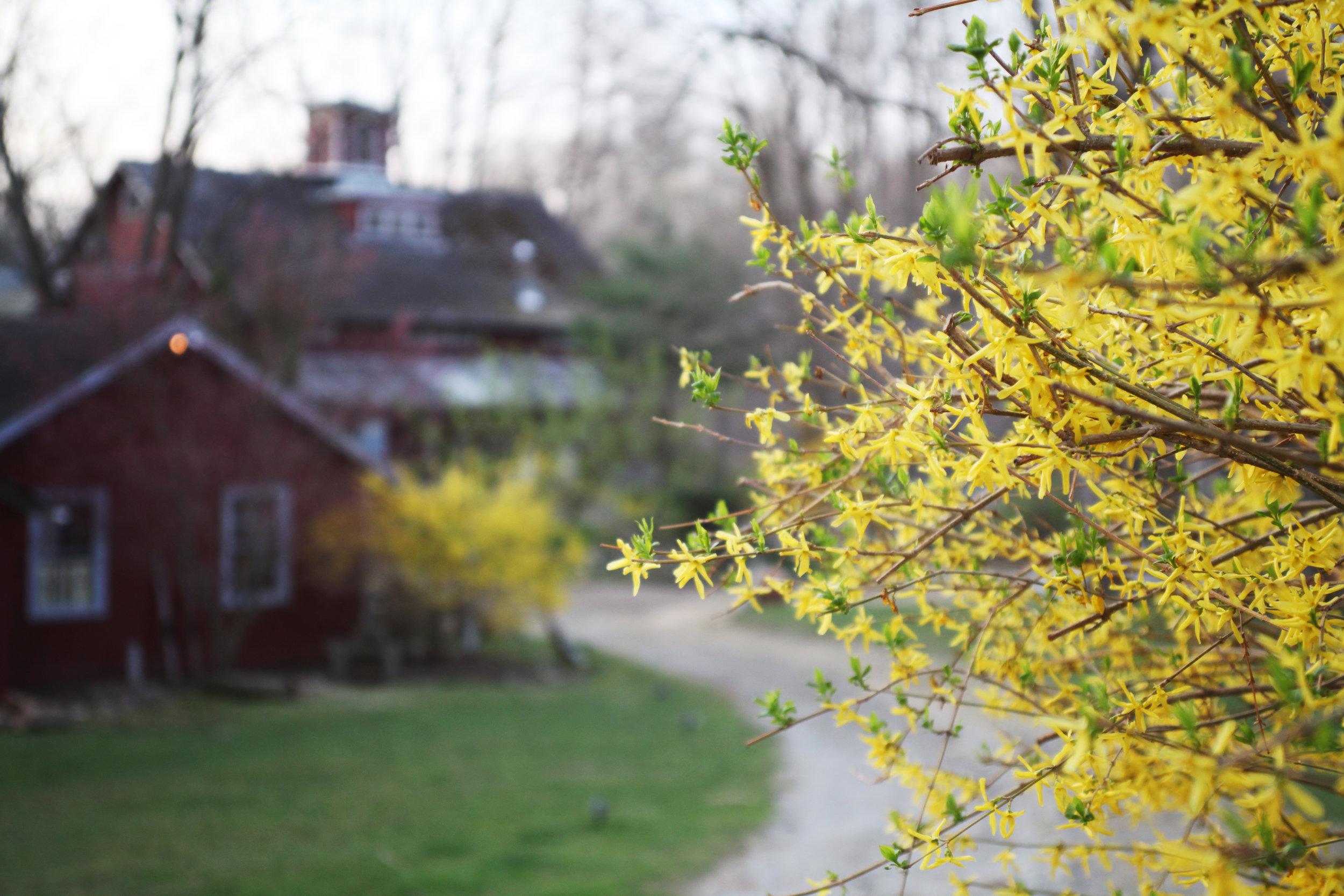 Spring-Weekend-Getaway-Package.jpg