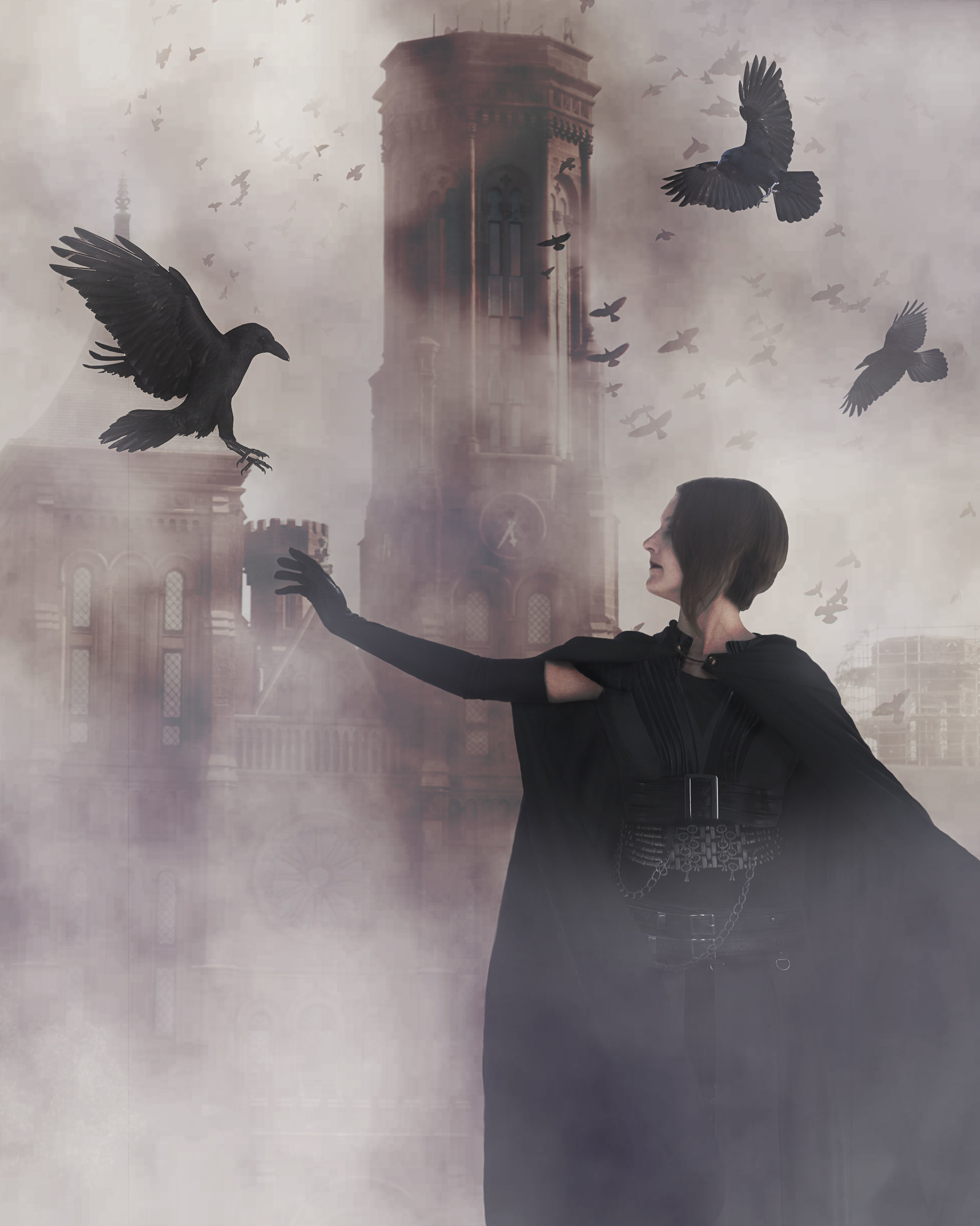 """""""Crows in the Mist""""  Photo composite April 2018"""
