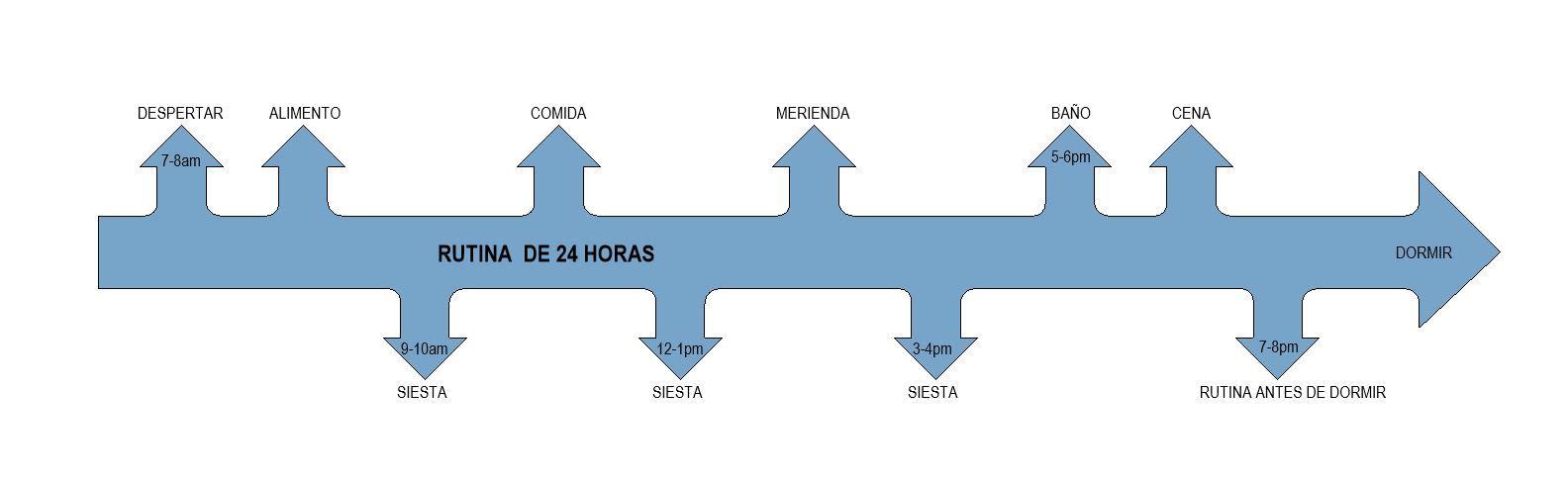 Diagrama para crear una rutina de bebé.