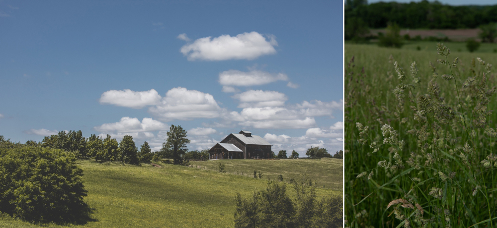 weston-red-barn-farm-kansas-city-wedding-photographer-jason-domingues-photography-kellyn-tony-blog-0002.jpg