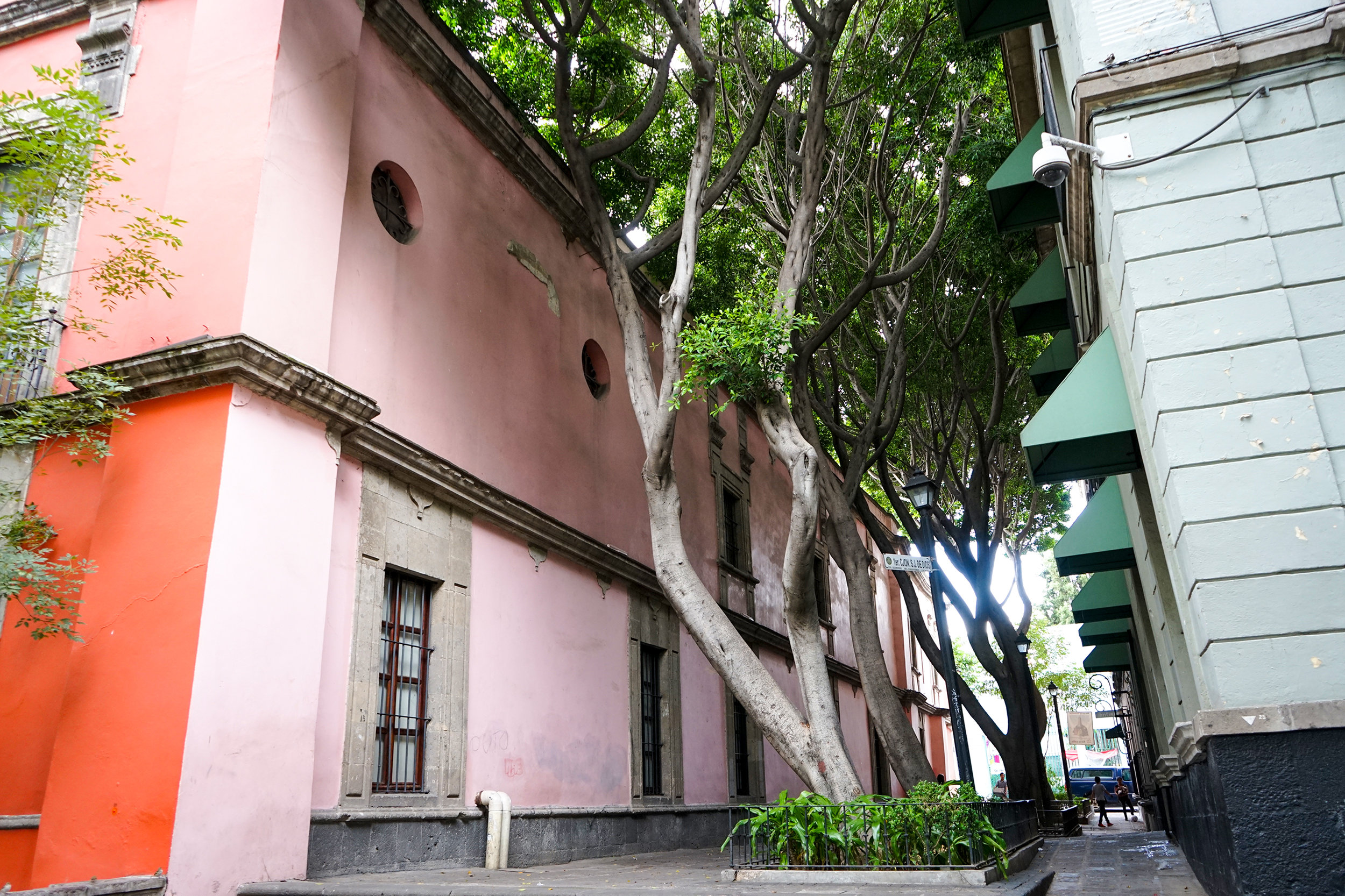 Pink Alley.jpg