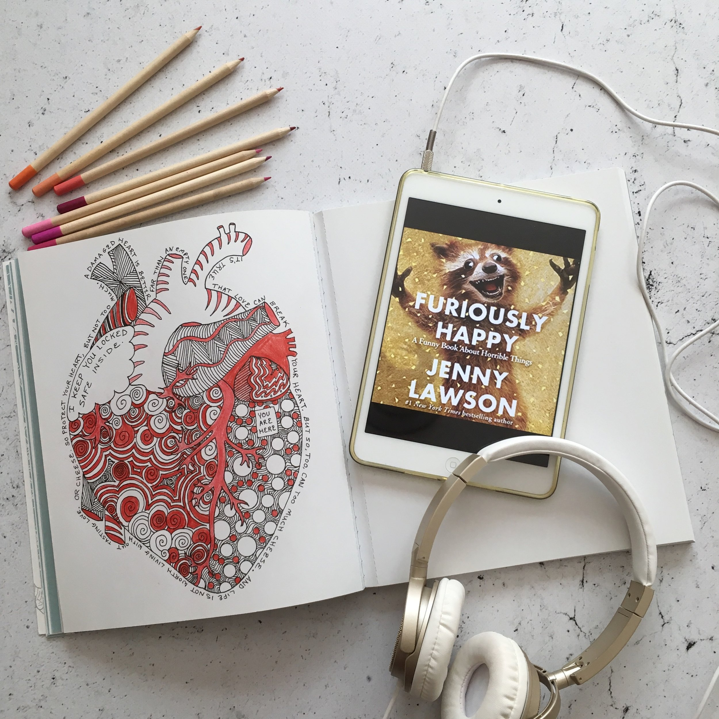Audiobook:  Furiously Happy: A Funny Book About Horrible Things by Jenny Lawson   Coloring book:  You Are Here: Owners Manual for Dangerous Minds by Jenny Lawson