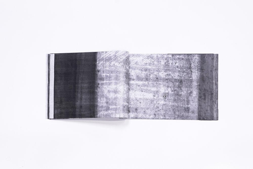 rice:perspex3.jpg