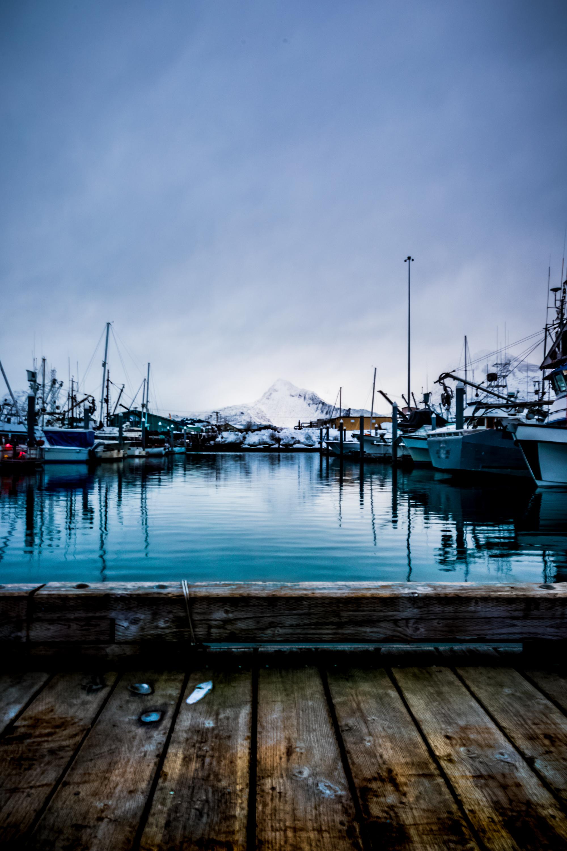 valdez alaska photo
