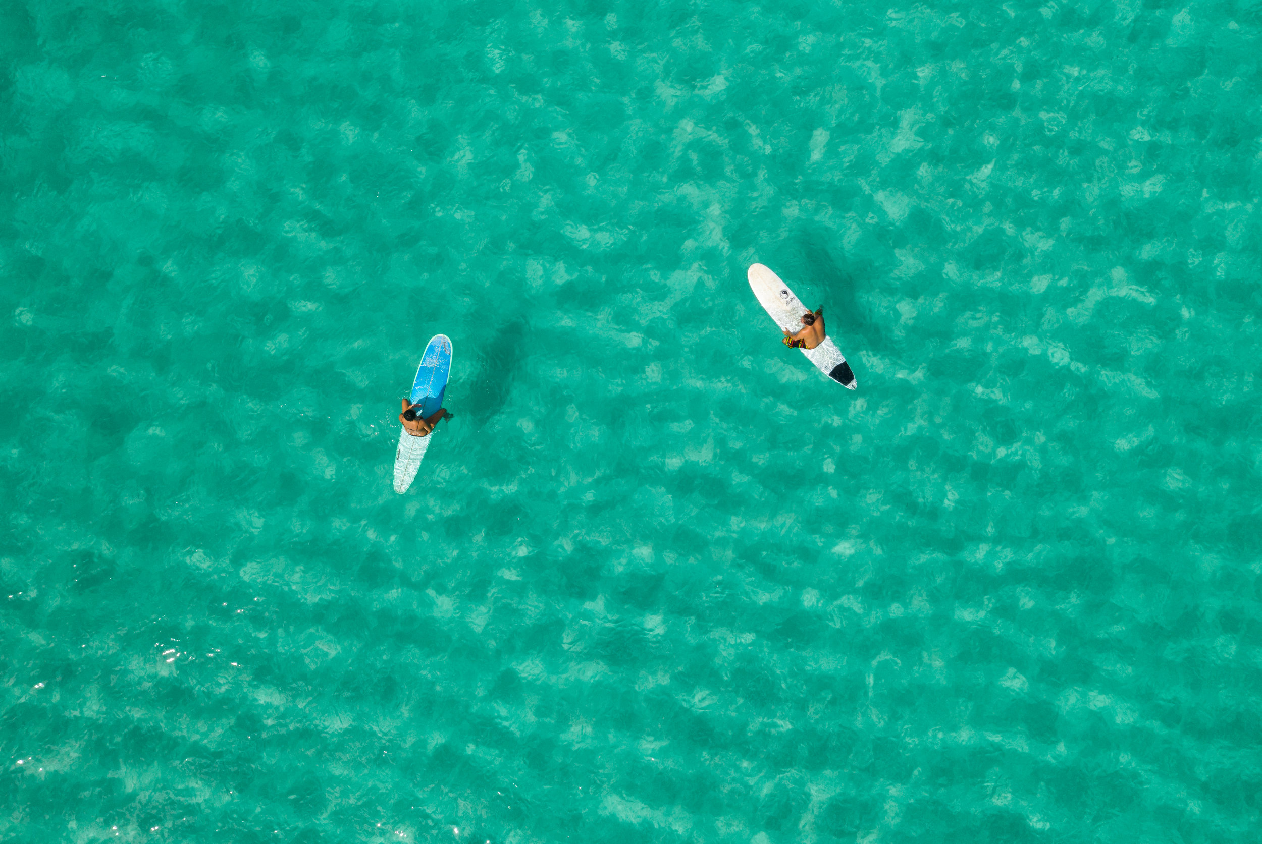 Blue ass water North Shore Oahu
