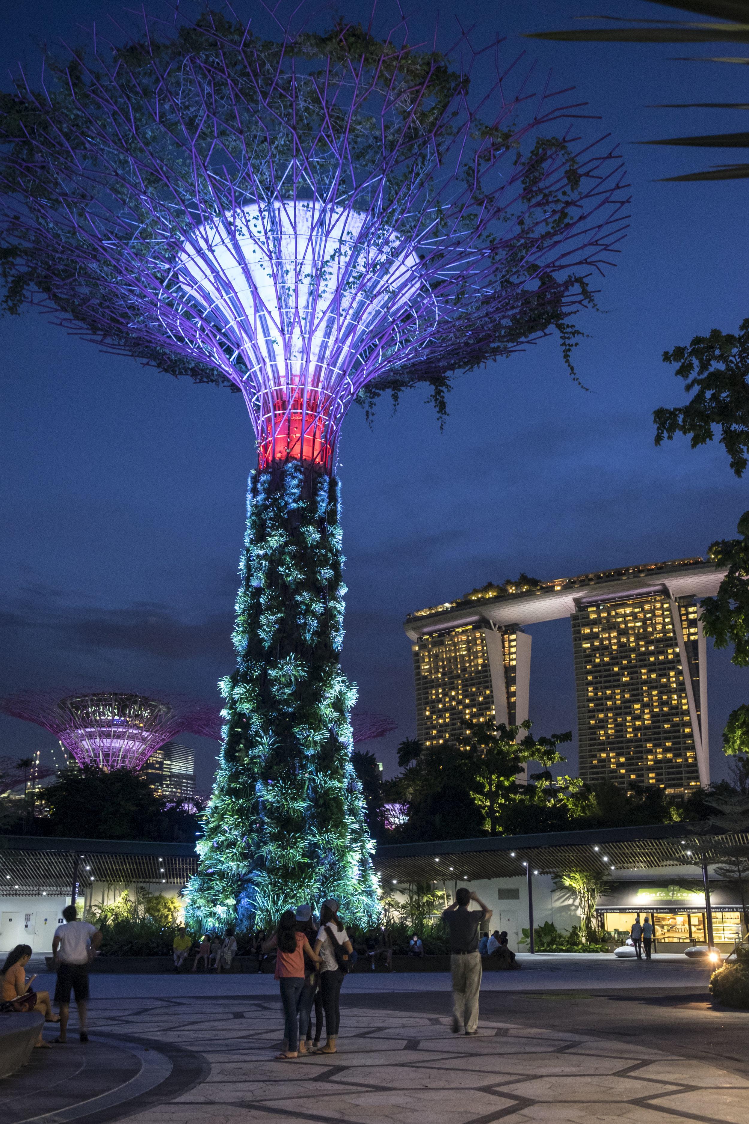 Singapore_20160616_0042.jpg