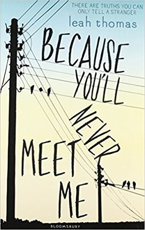 Because You'll Never Meet Me byLeah Thomas